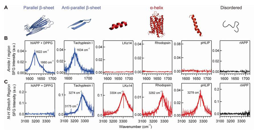 IJMS | Free Full-Text | Chiral Vibrational Structures of ...