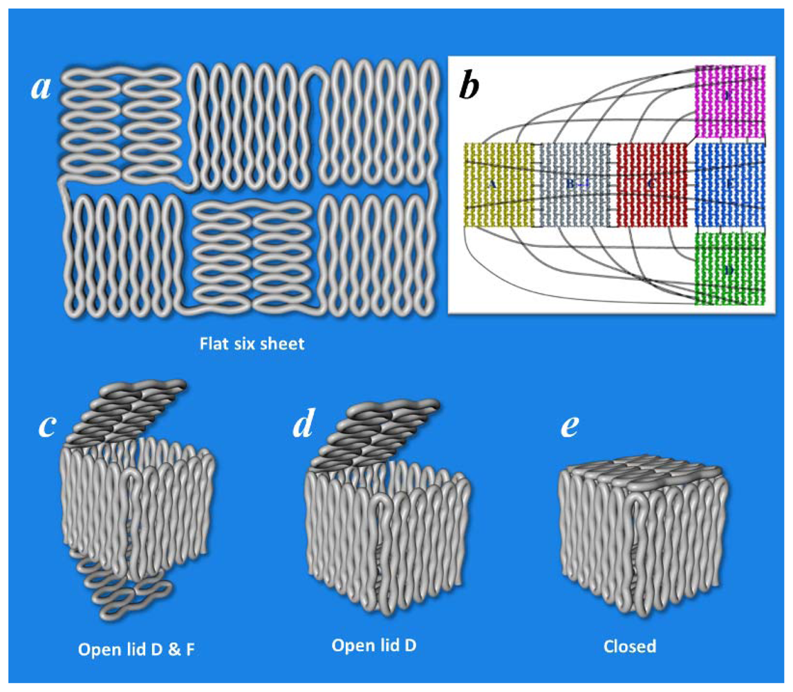 IJMS | Free Full-Text | Structural DNA Nanotechnology: From Design ...