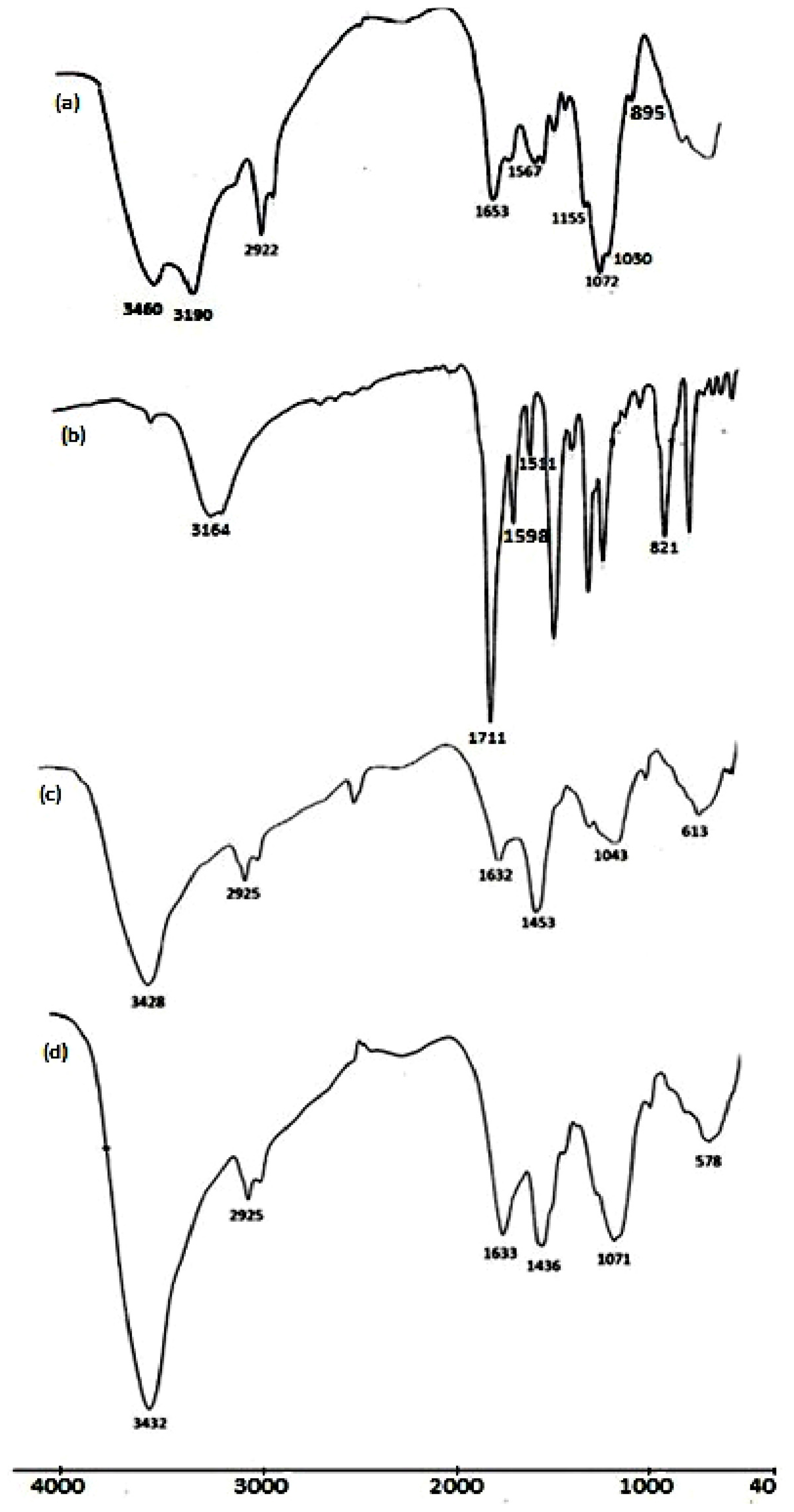 download Ontology and Economics: Tony Lawson and His Critics 2008