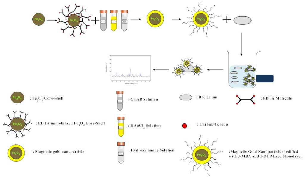 nanospheres of ag coated fe3o4 synthesis Peng zhao and chunzhong li, graphene/carbon-coated fe3o4  silica-coated ag  synthesis of mno2 hollow nanospheres and.