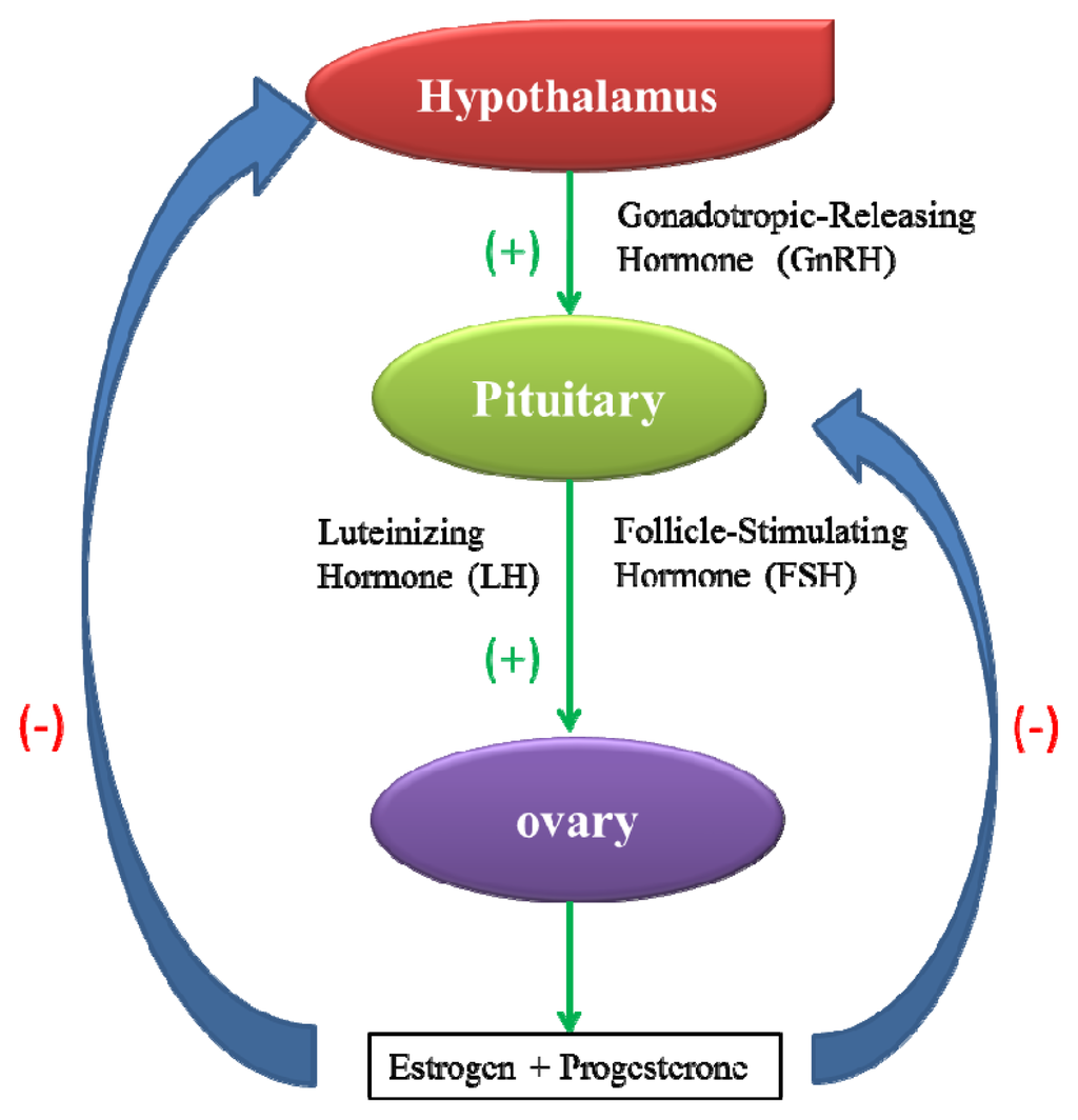 Nanotoxicity to Female Reproductivity and Embryonic Development in    Hypothalamic Dysfunction