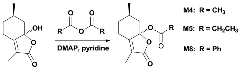 metformin pcos