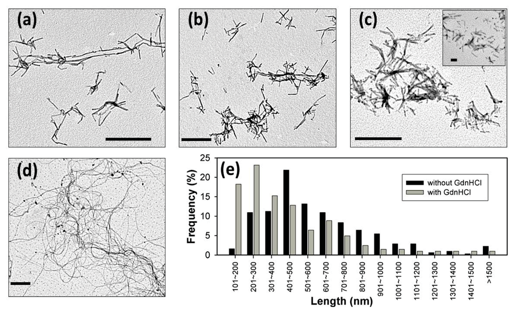 semisynthesis of a glycosylphosphatidylinositol anchored prion protein A prominent example of a gpi‐anchored protein is the prion protein (prp)9  numerous studies have indicated the strong influence of.