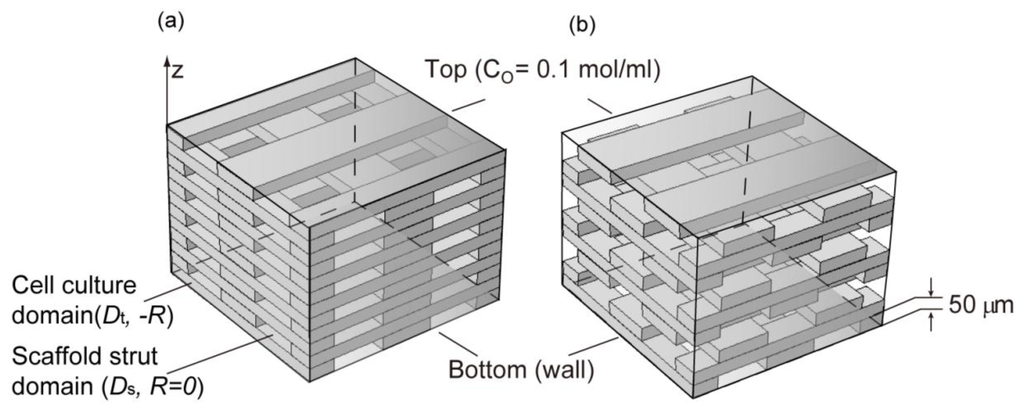 IJMS Free Full-Text Microscale Diffusion Measurements