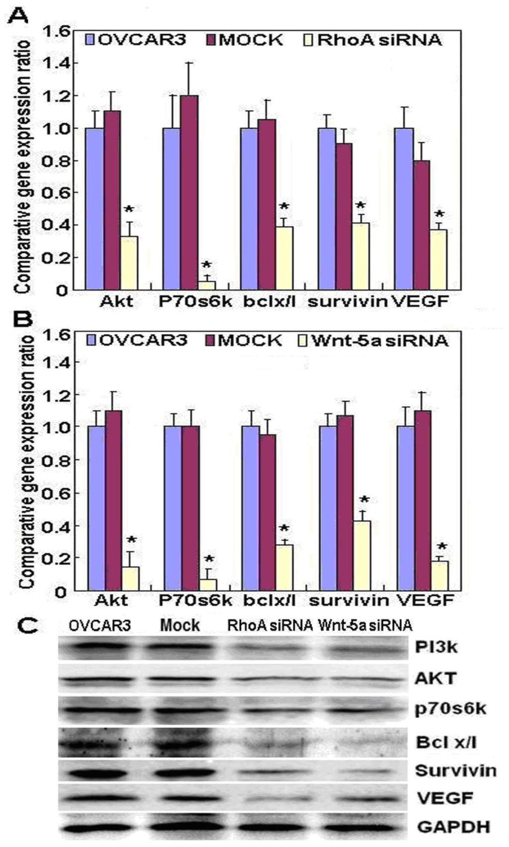 Lysine-specific demethylase 1 promotes tumorigenesis and