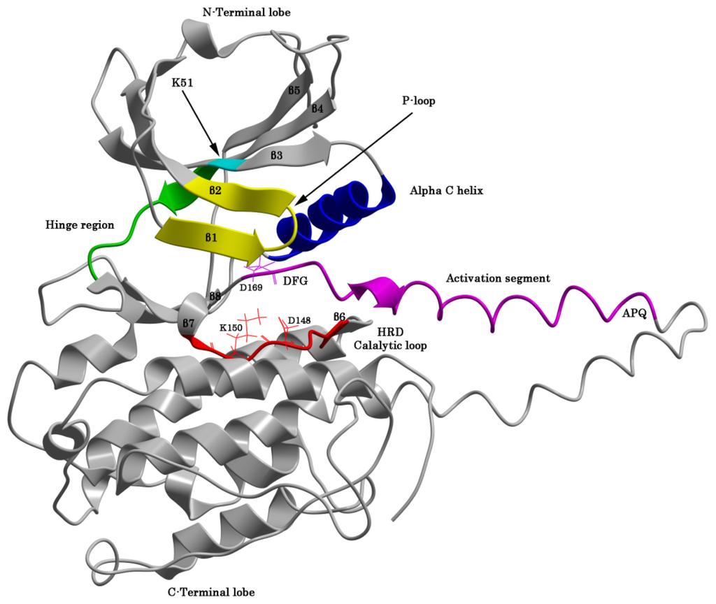 advanced molecular biology twyman pdf
