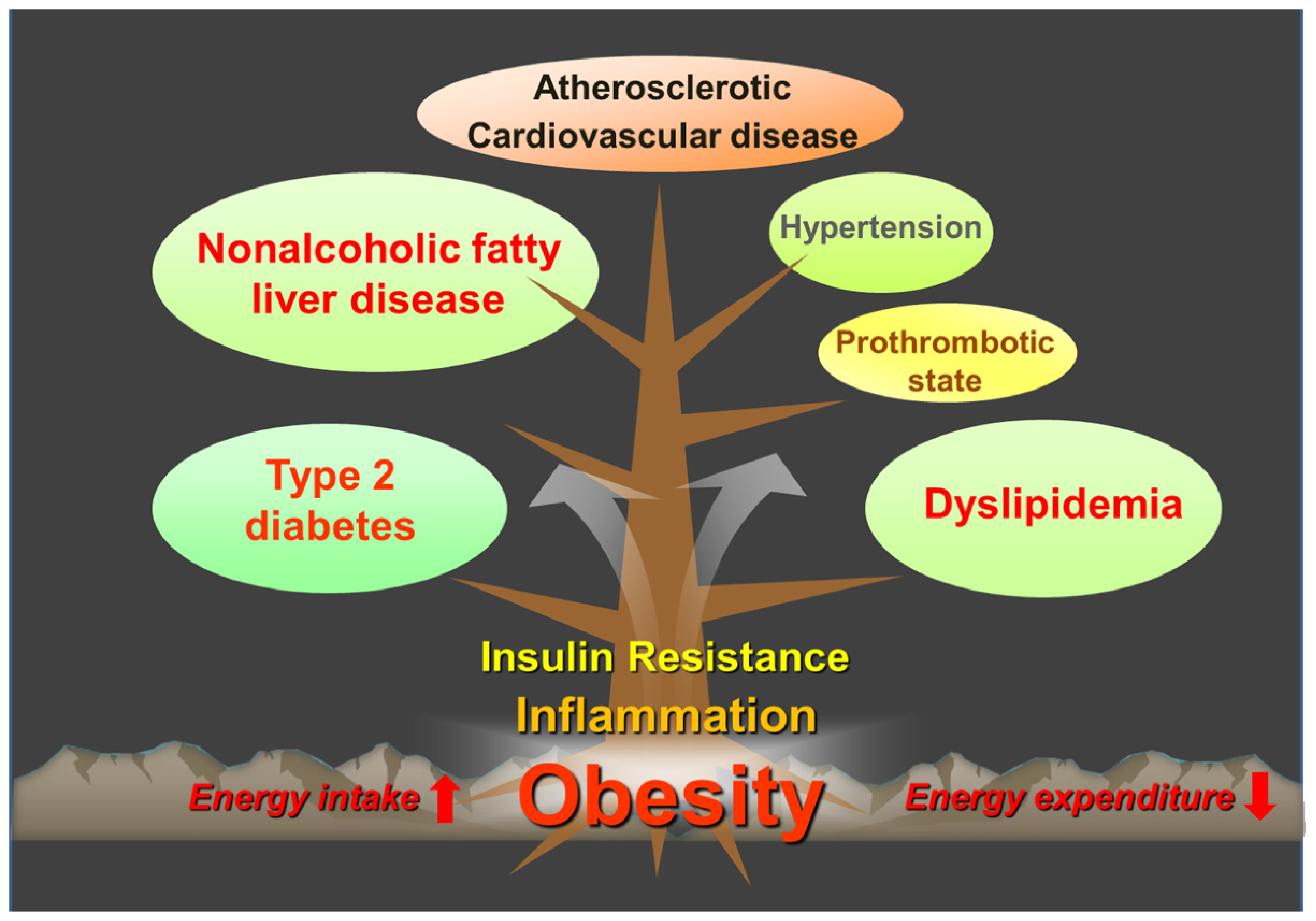 roles of inflammation in diseases essay