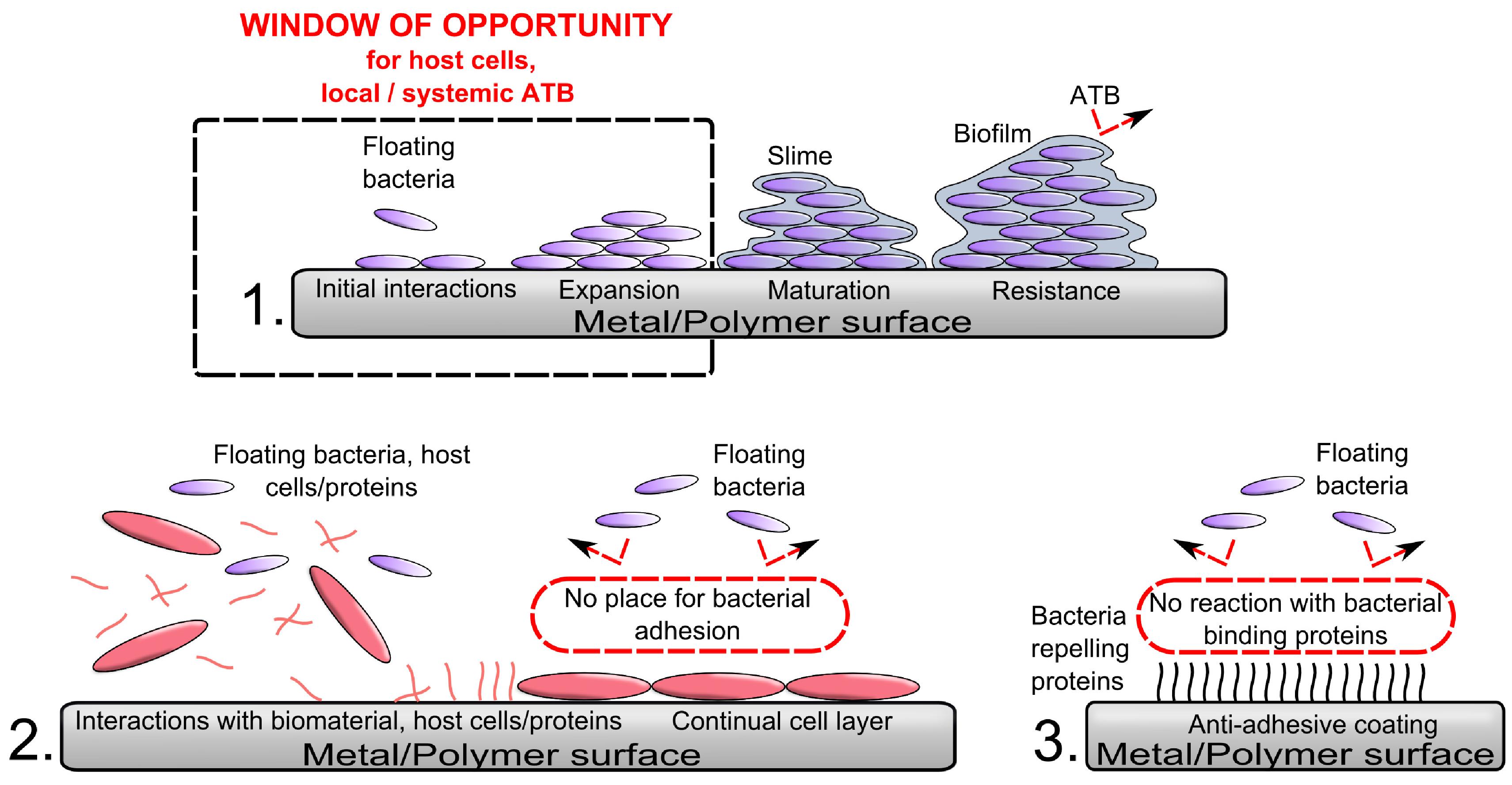 pdf Моделирование интегральных микротехнологий, приборов и схем