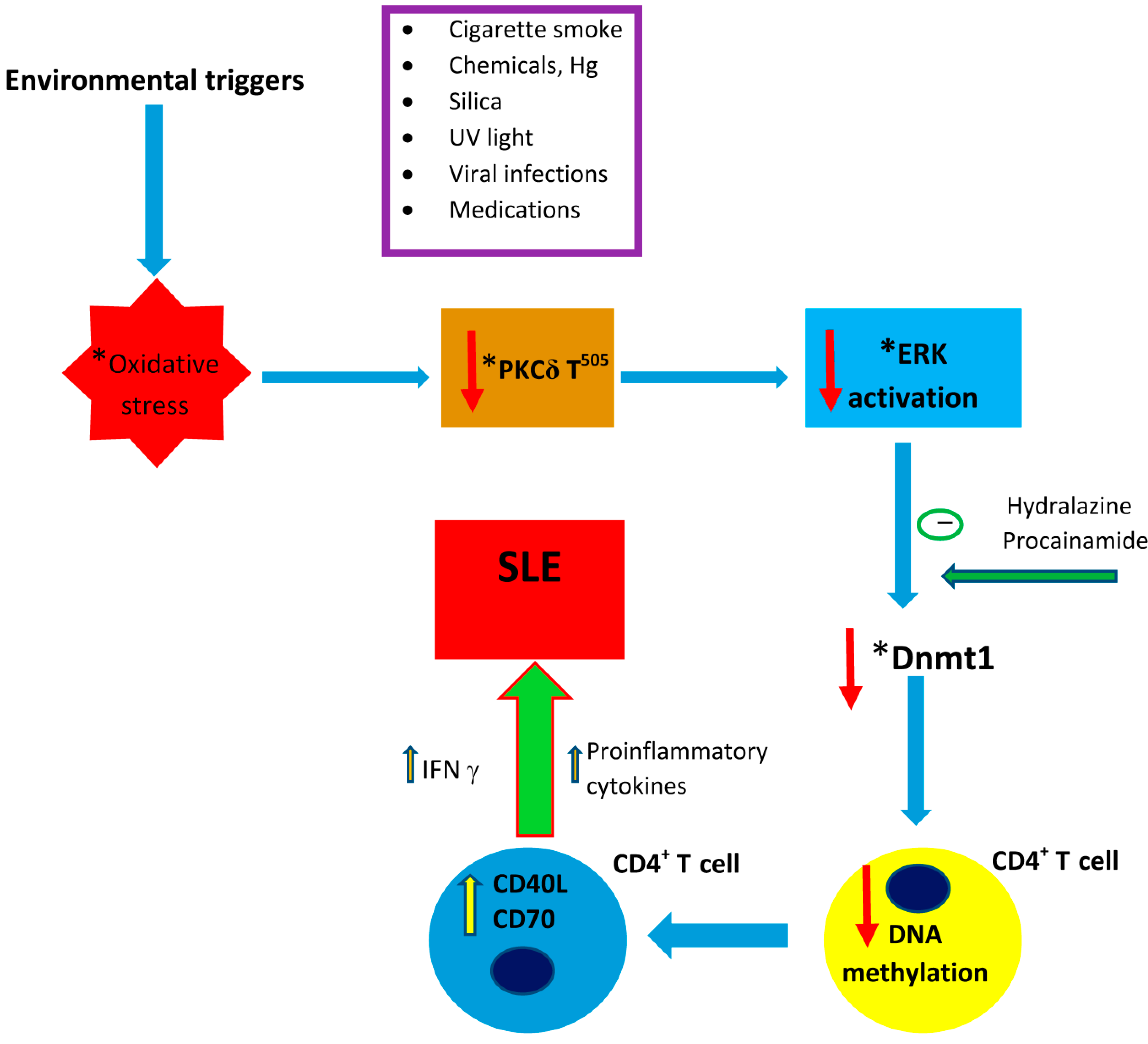 ijms free full text environmental factors, toxicants and Multiple Sclerosis Diagram