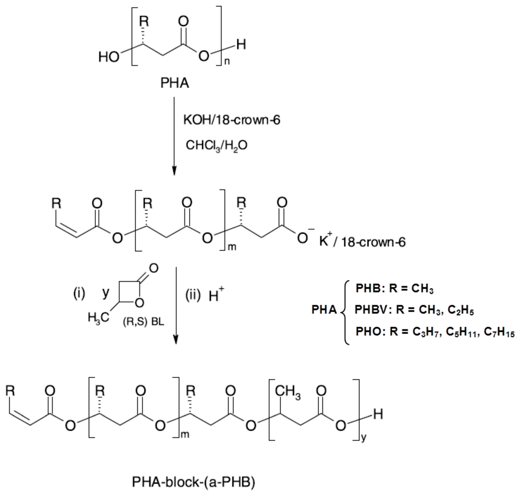 enzyme used to synthesise phb Polyhydroxybutyrate (phb) is a polyhydroxyalkanoate (pha), a polymer belonging to the polyesters class that are of interest as bio-derived and biodegradable plastics.