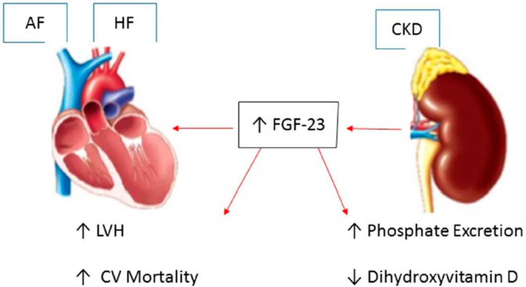 Evidence-Based Practice for Acute Decompensated Heart Failure
