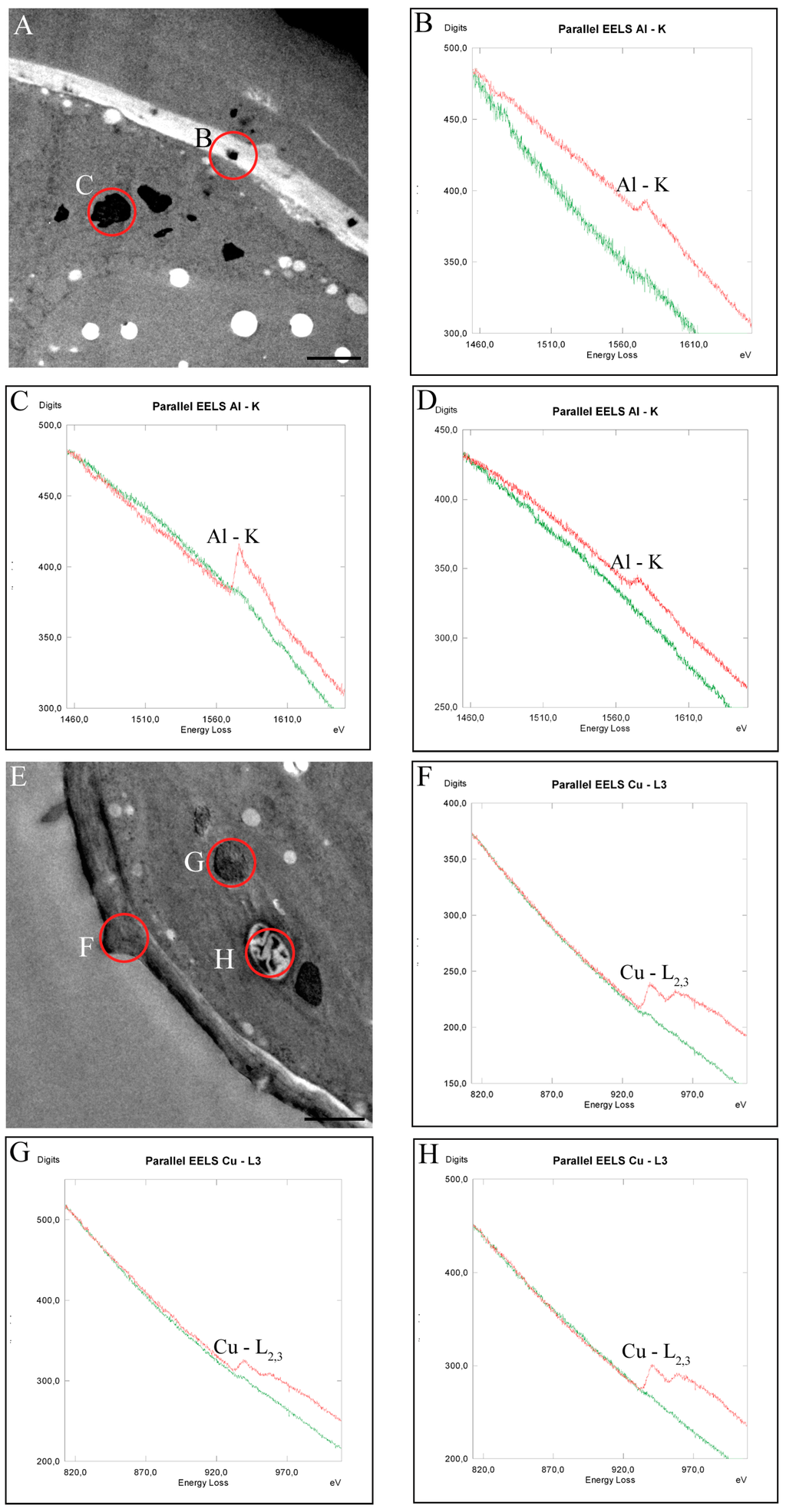 Ijms special issue effects of herbicides and heavy metals to the open ccuart Choice Image