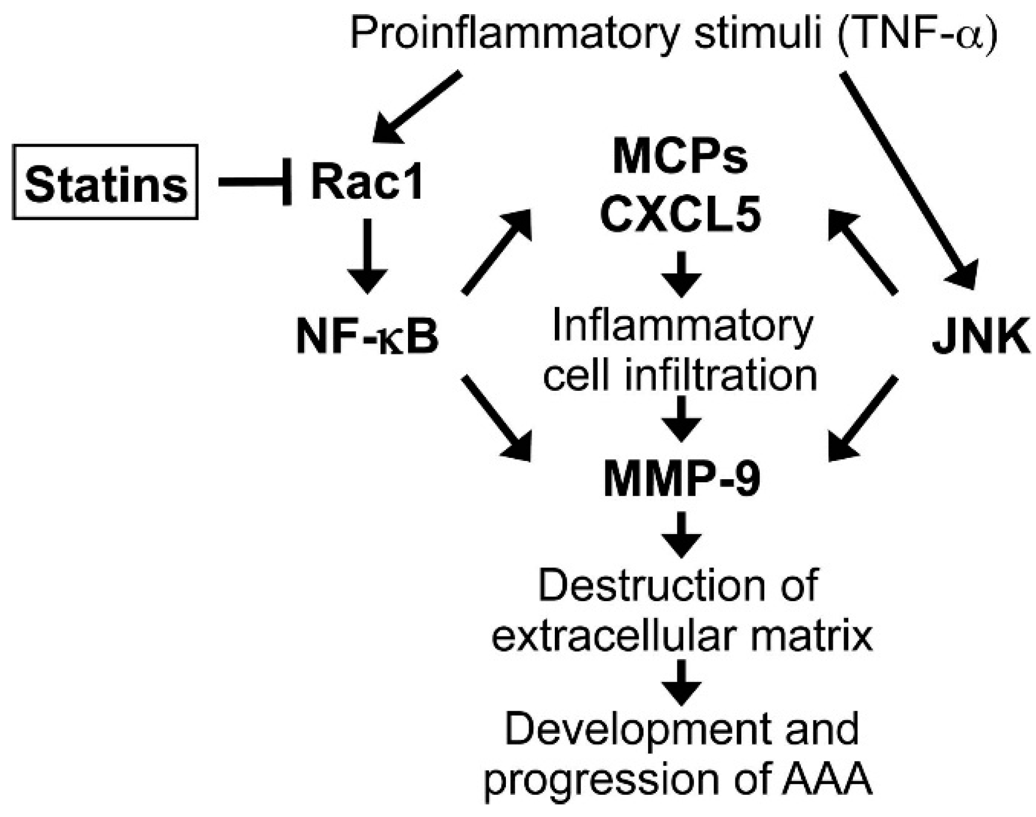 Ijms free full text inhibitory effect of statins on ijms 16 11213 g007 1024 geenschuldenfo Gallery
