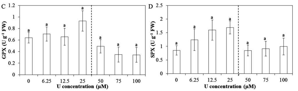 study of ph of different antacids pdf