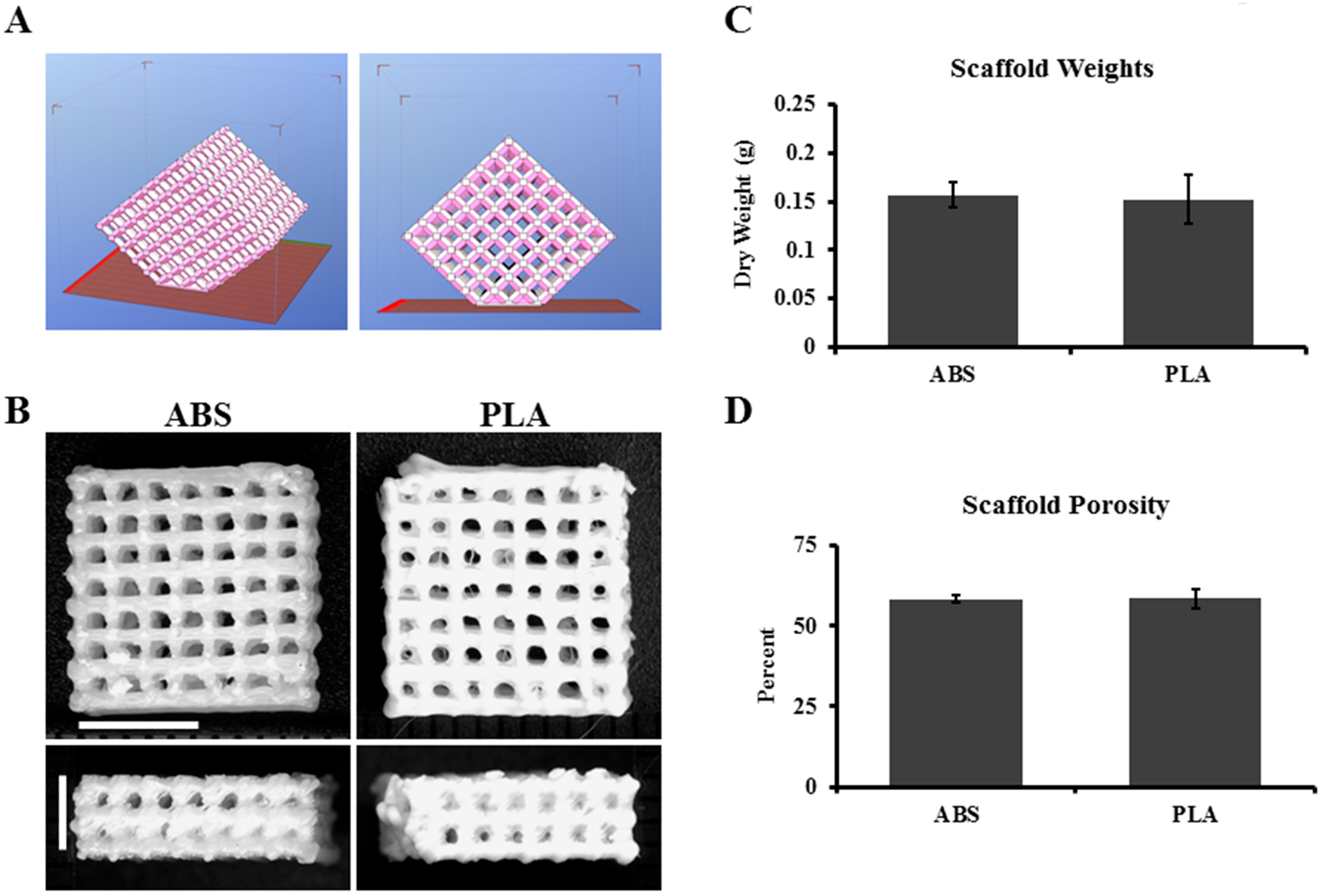 3d printing pla scaffolds for tissue regeneration applications