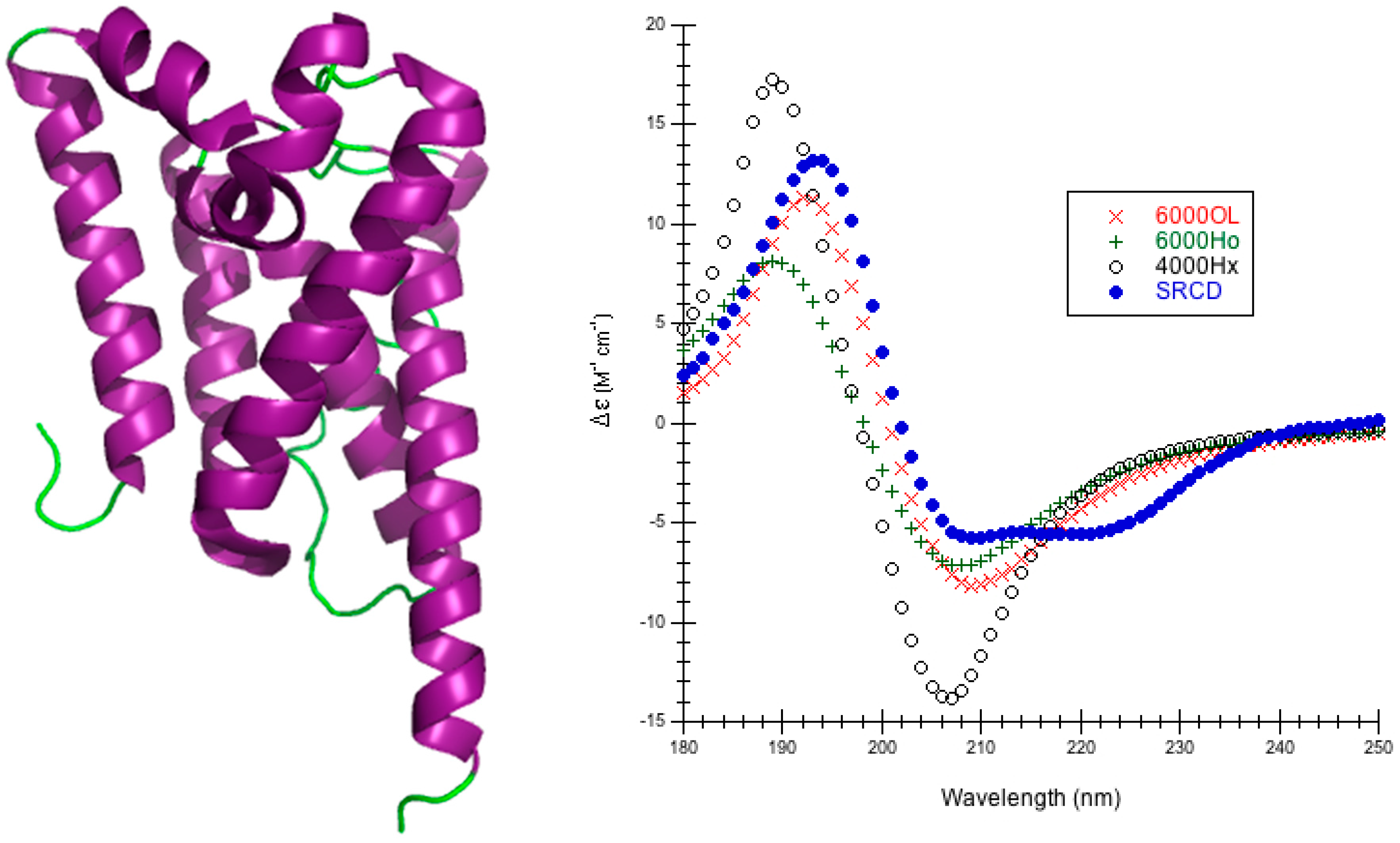 circular dichroism and secondary structure of proteins essay