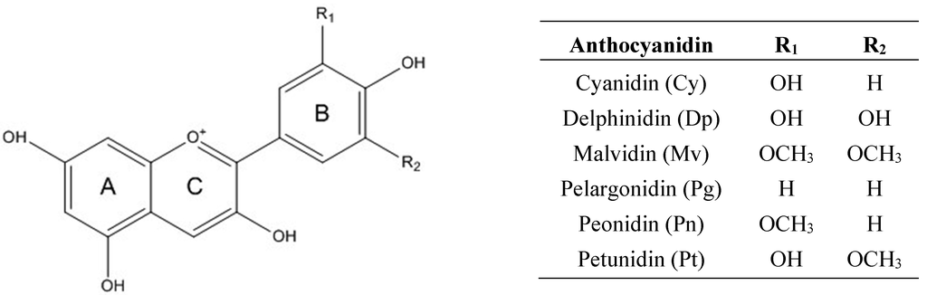the purpose of classifying anthocyanidin compounds that had been isolated from anthocyanins in diffe This approach allows qualitative and quantitative analysis of phenolic compounds this system has been had the same east orientation compounds were isolated.