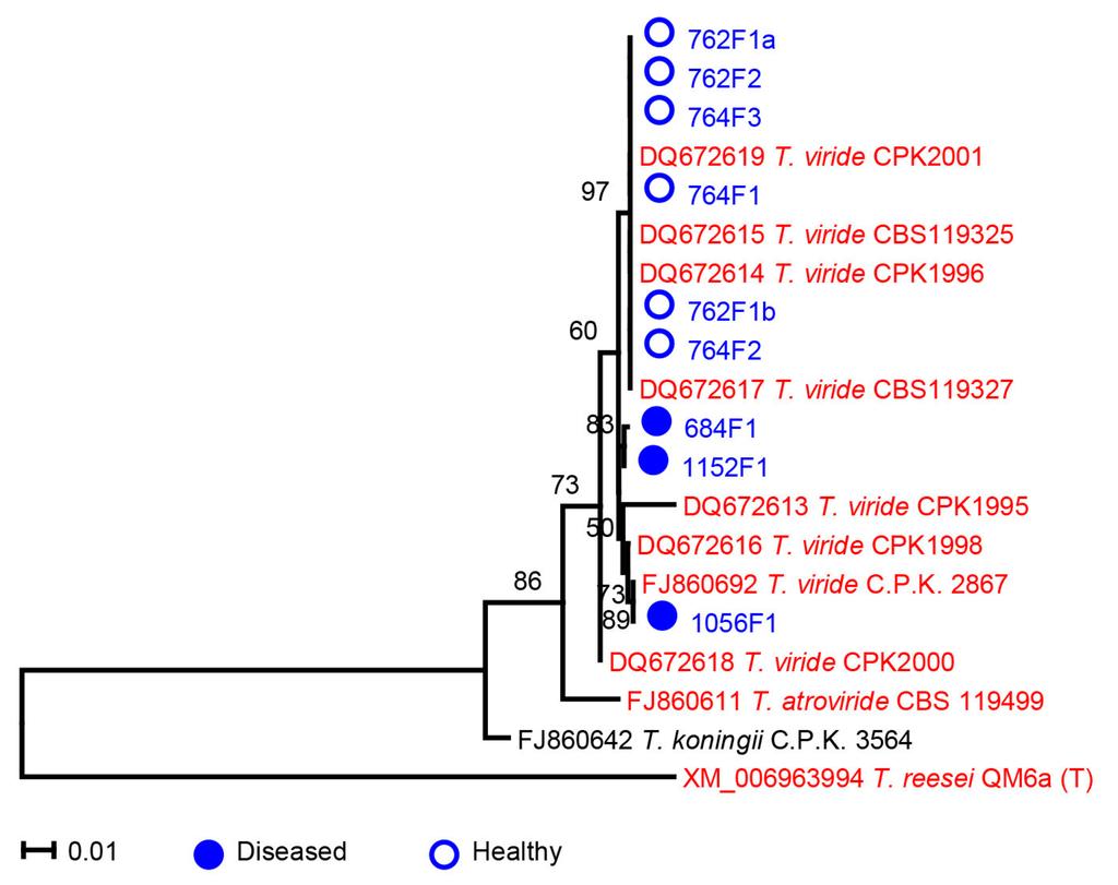 fungal diseases in plants pdf