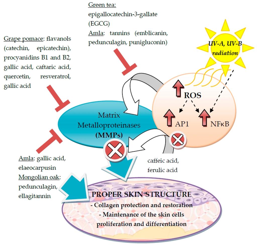 norvasc hydrochlorothiazide