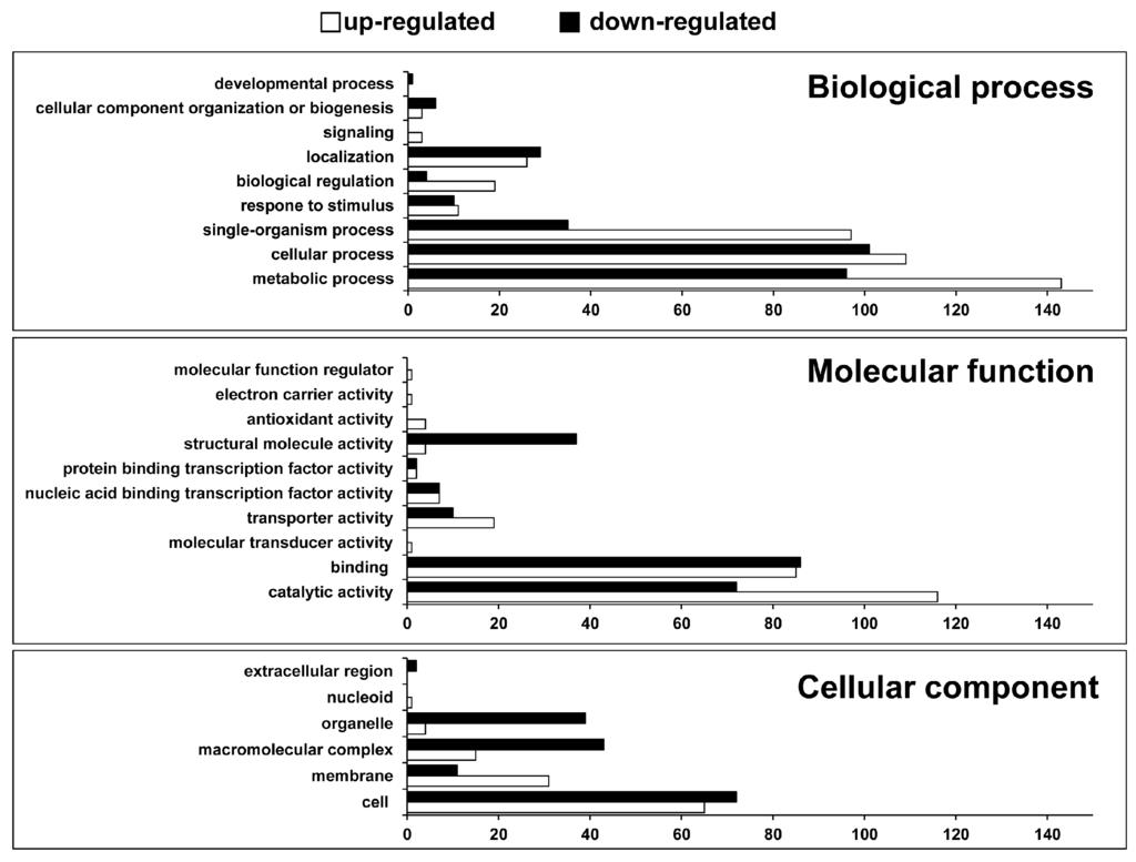 R Gene Ontology Enrichment Analysis Essay - image 3