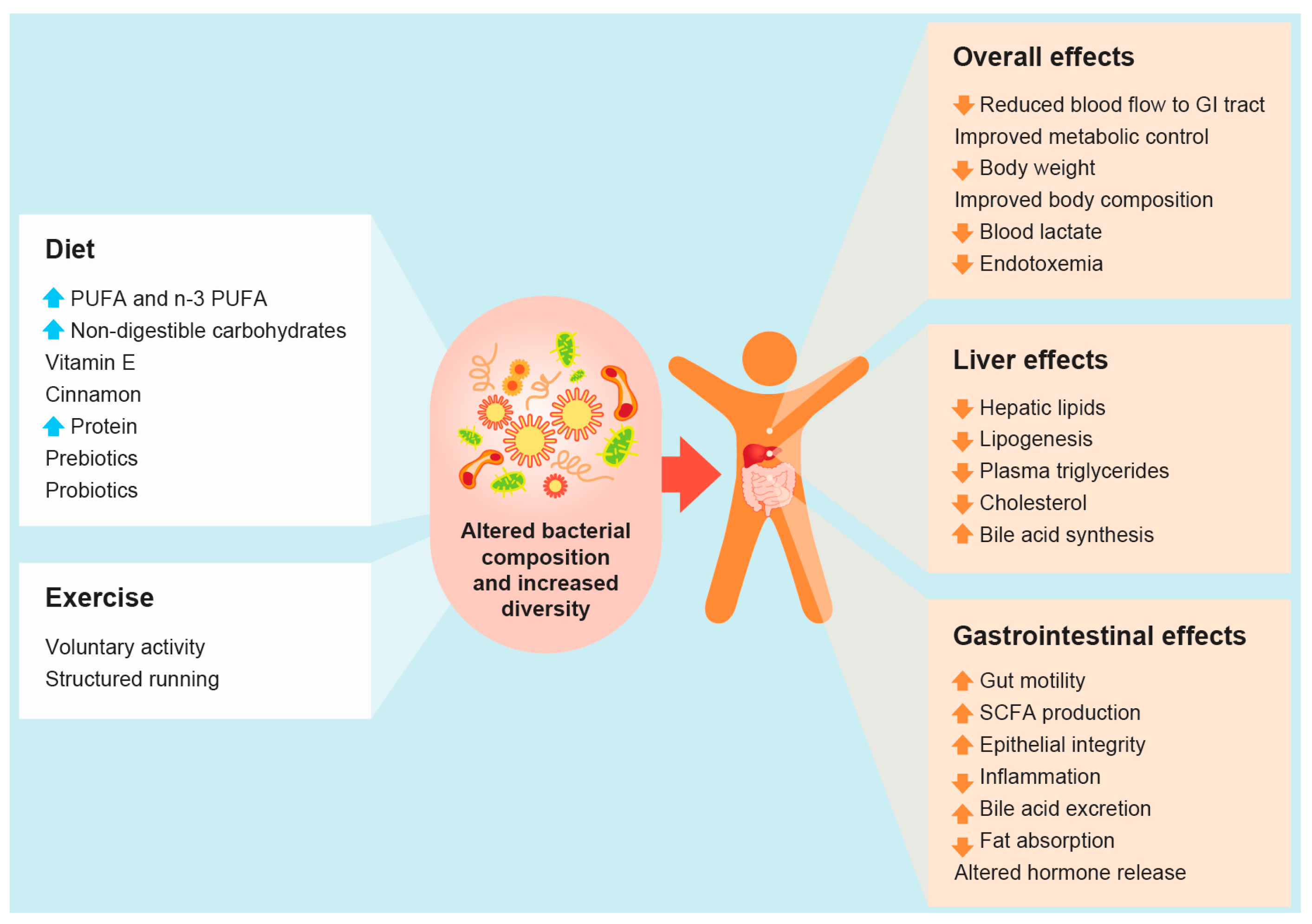 diet to improve gut microbiome pdf