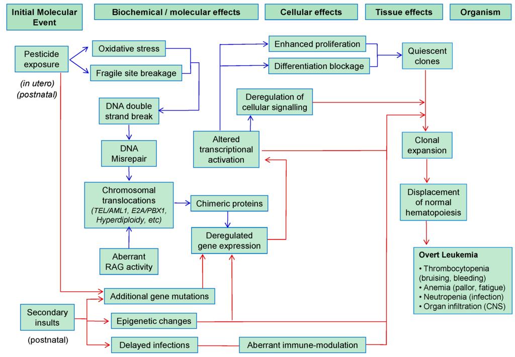 General environmental factors affecting wal mart management essay