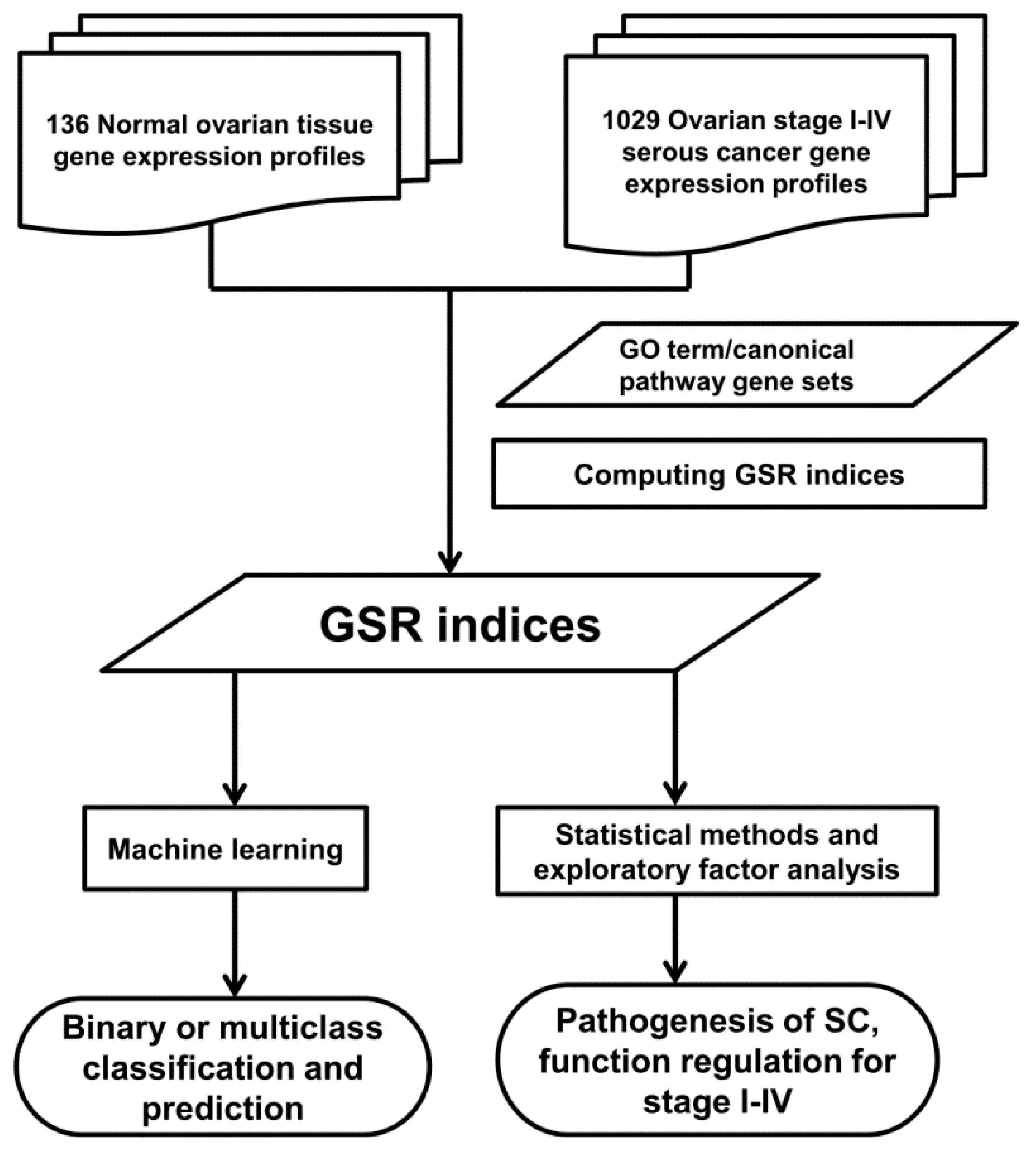 IJMS | Free Full-Text | Gene Set-Based Functionome Analysis