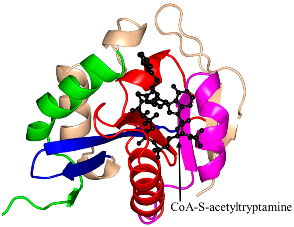 Ijms Special Issue Enzyme Inhibitor Interaction As Examples Of