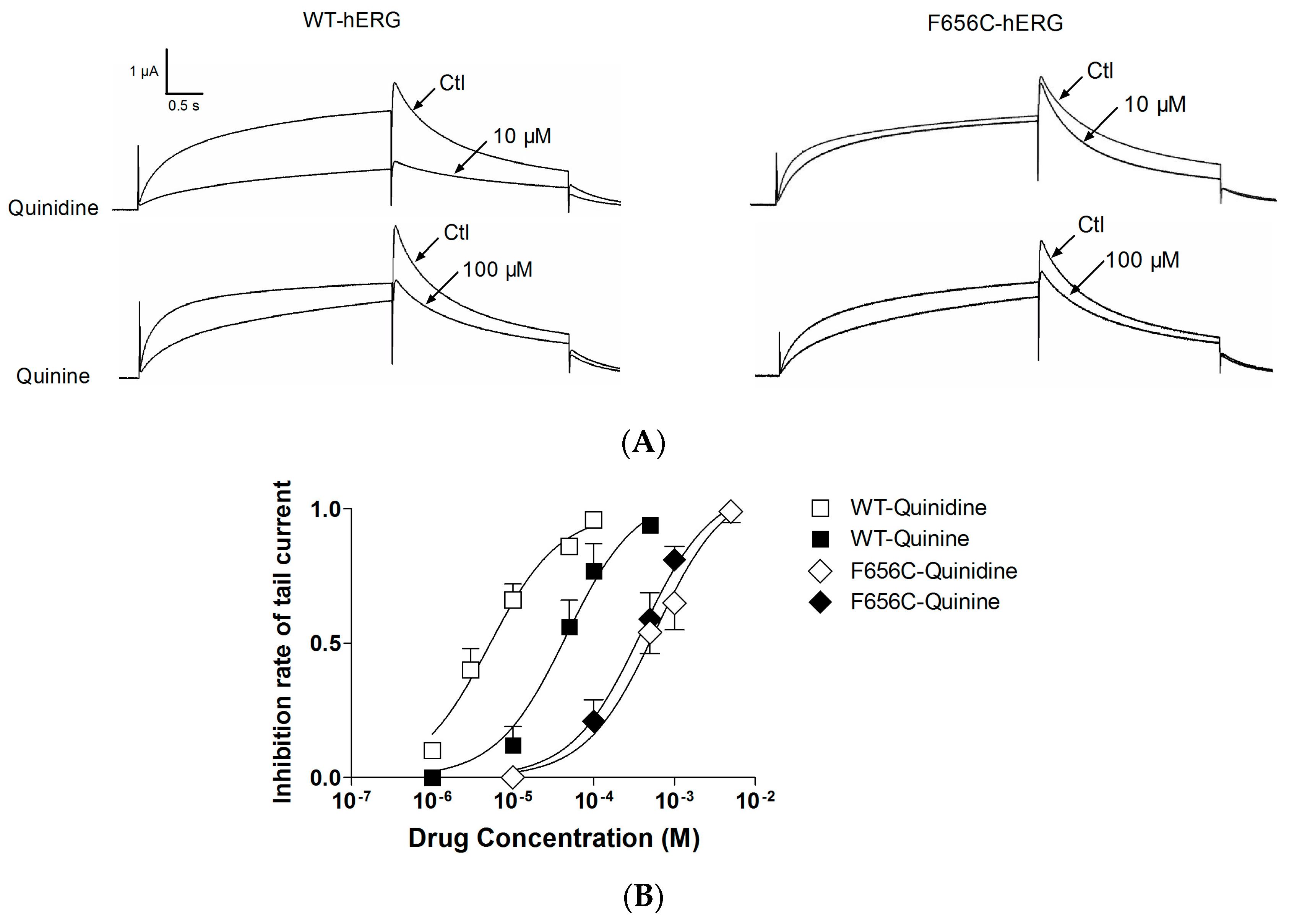 relationship between quinidine and quinine pills