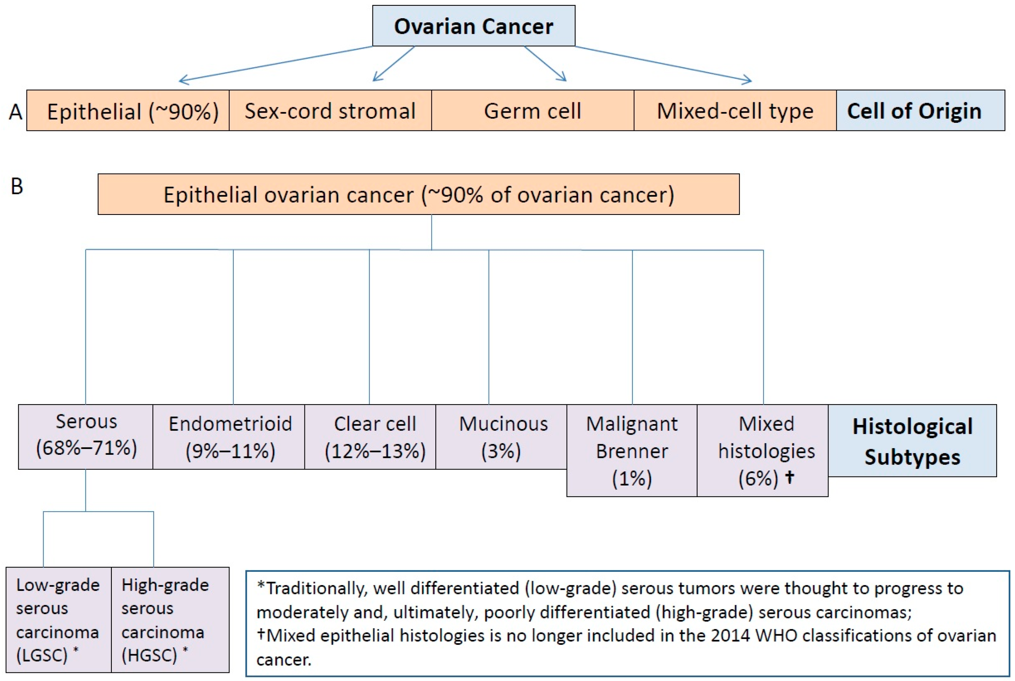 Ijms Free Full Text Molecular Characterization Of Epithelial Ovarian Cancer Implications For Diagnosis And Treatment Html
