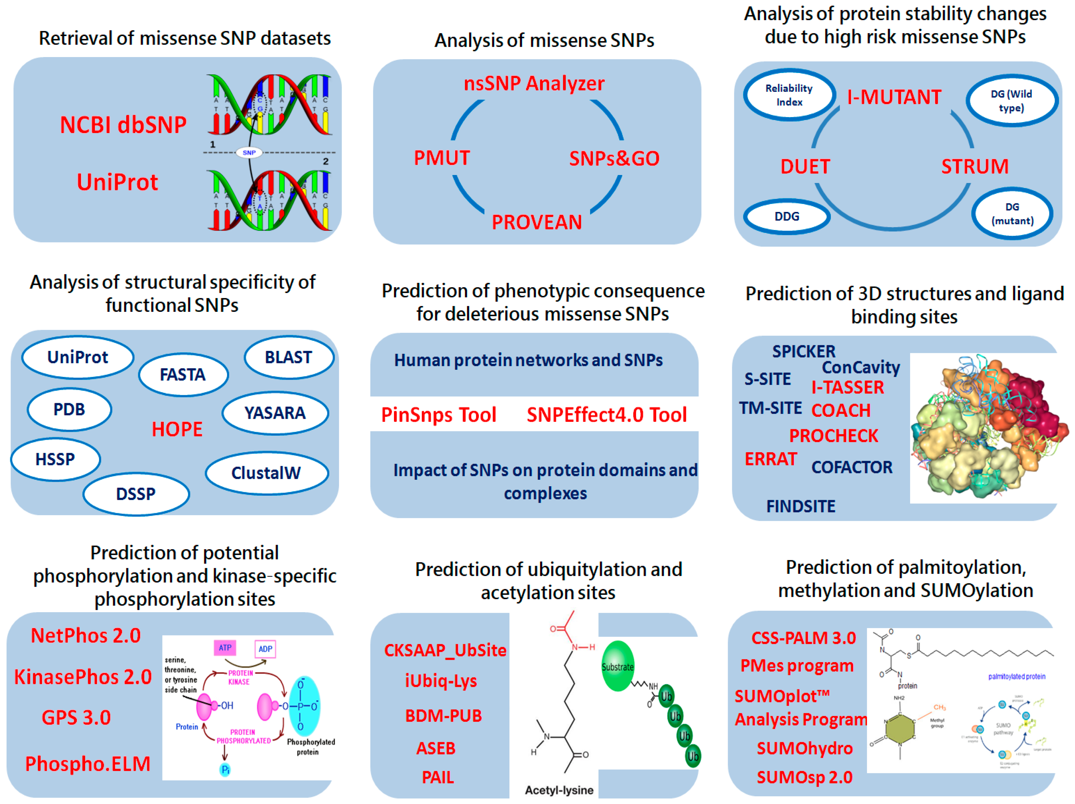 IJMS | Free Full-Text | Mutation-Structure-Function ...