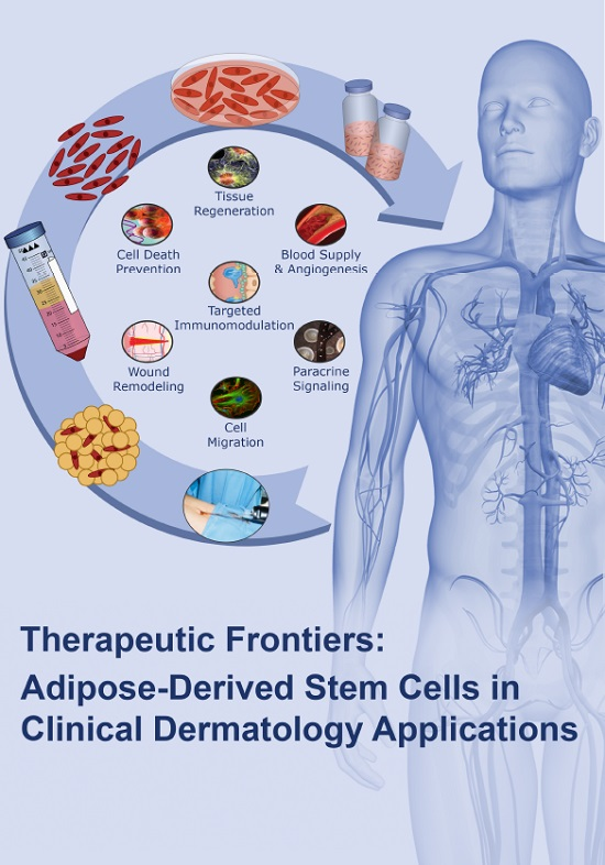 Ijms Free Full Text Mesenchymal Stem Cells From