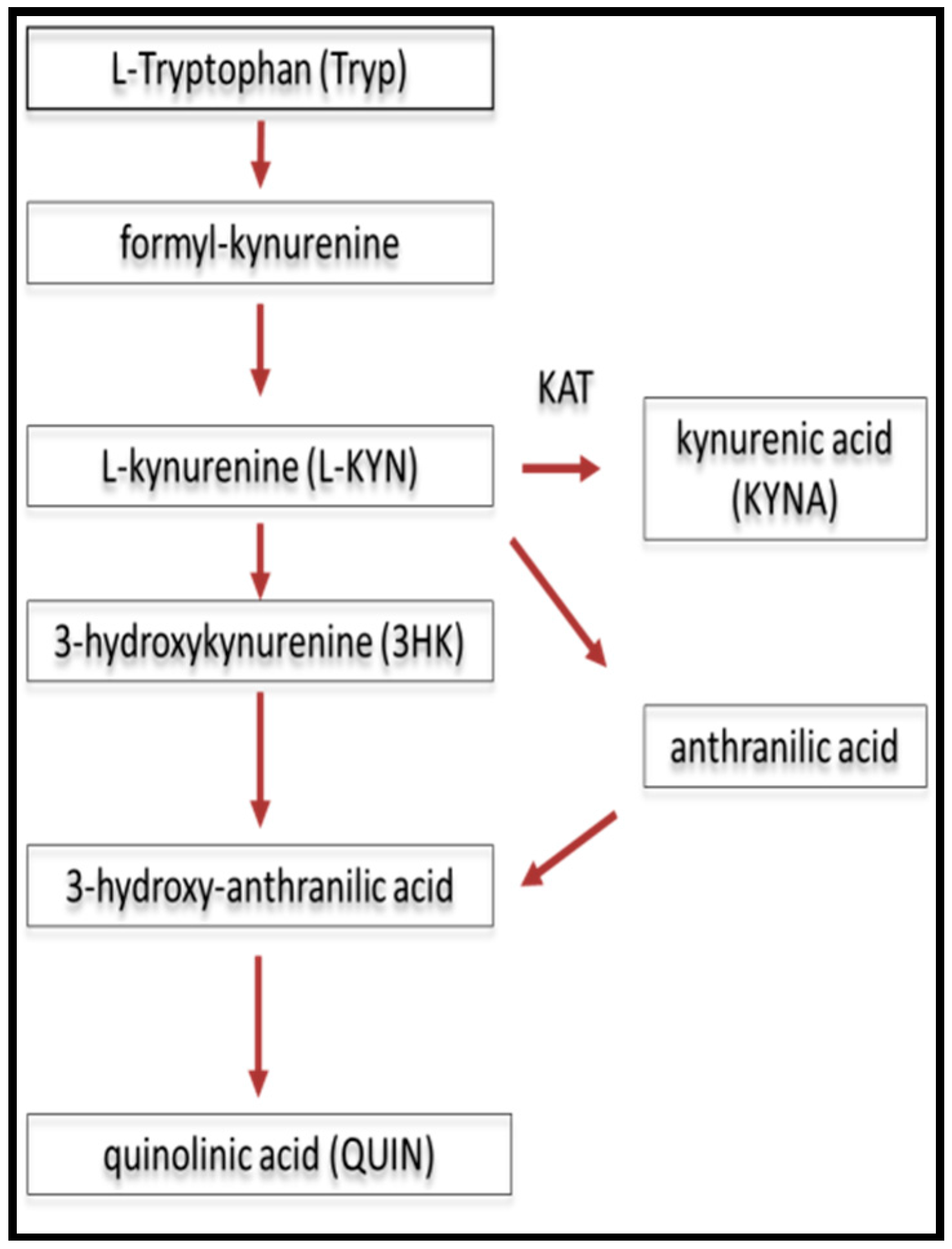 IJMS | Free Full-Text | Excitotoxins, Mitochondrial and