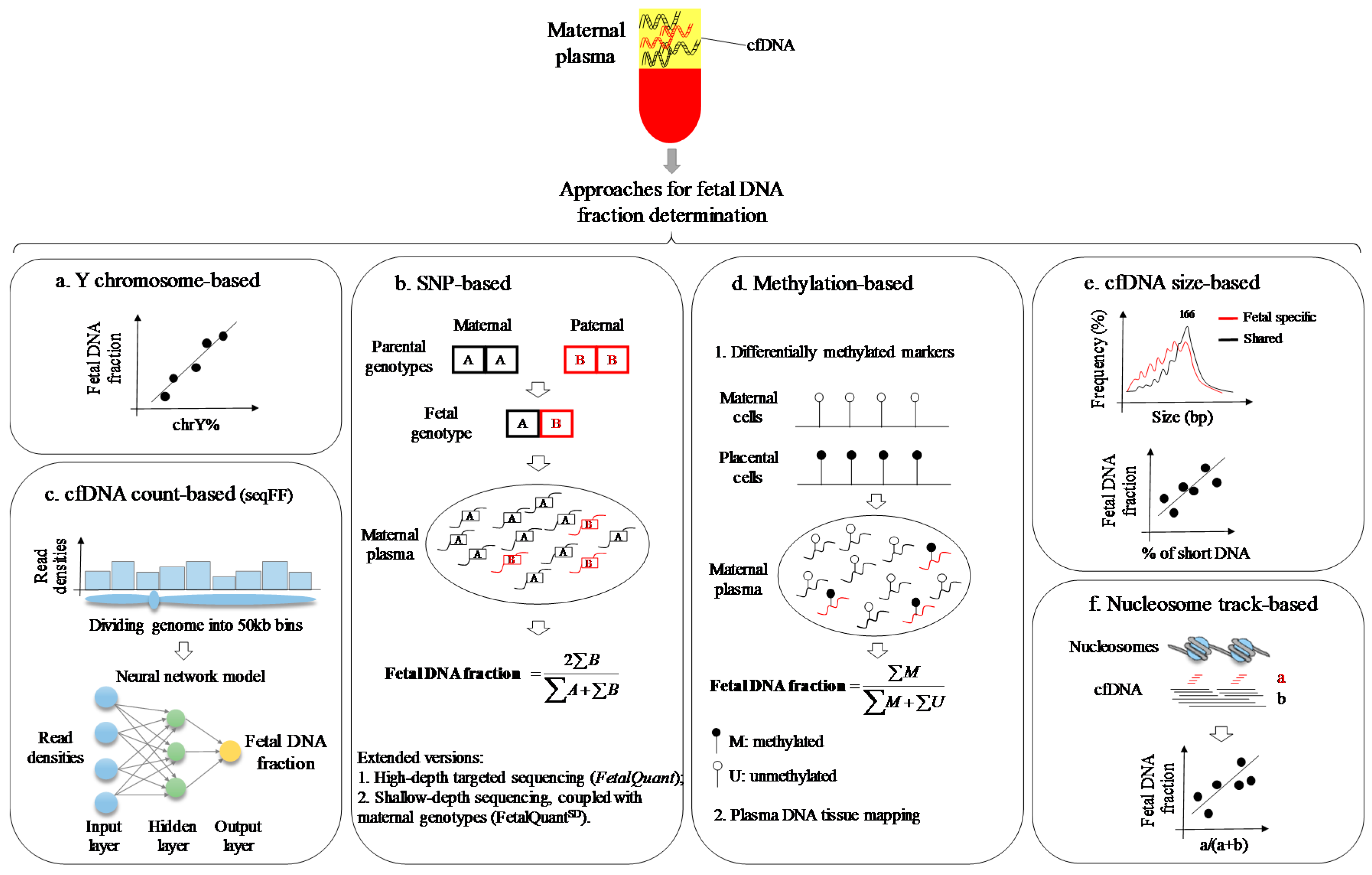 Unique Maternal Blood Dna Markers >> Ijms Free Full Text Bioinformatics Approaches For Fetal Dna