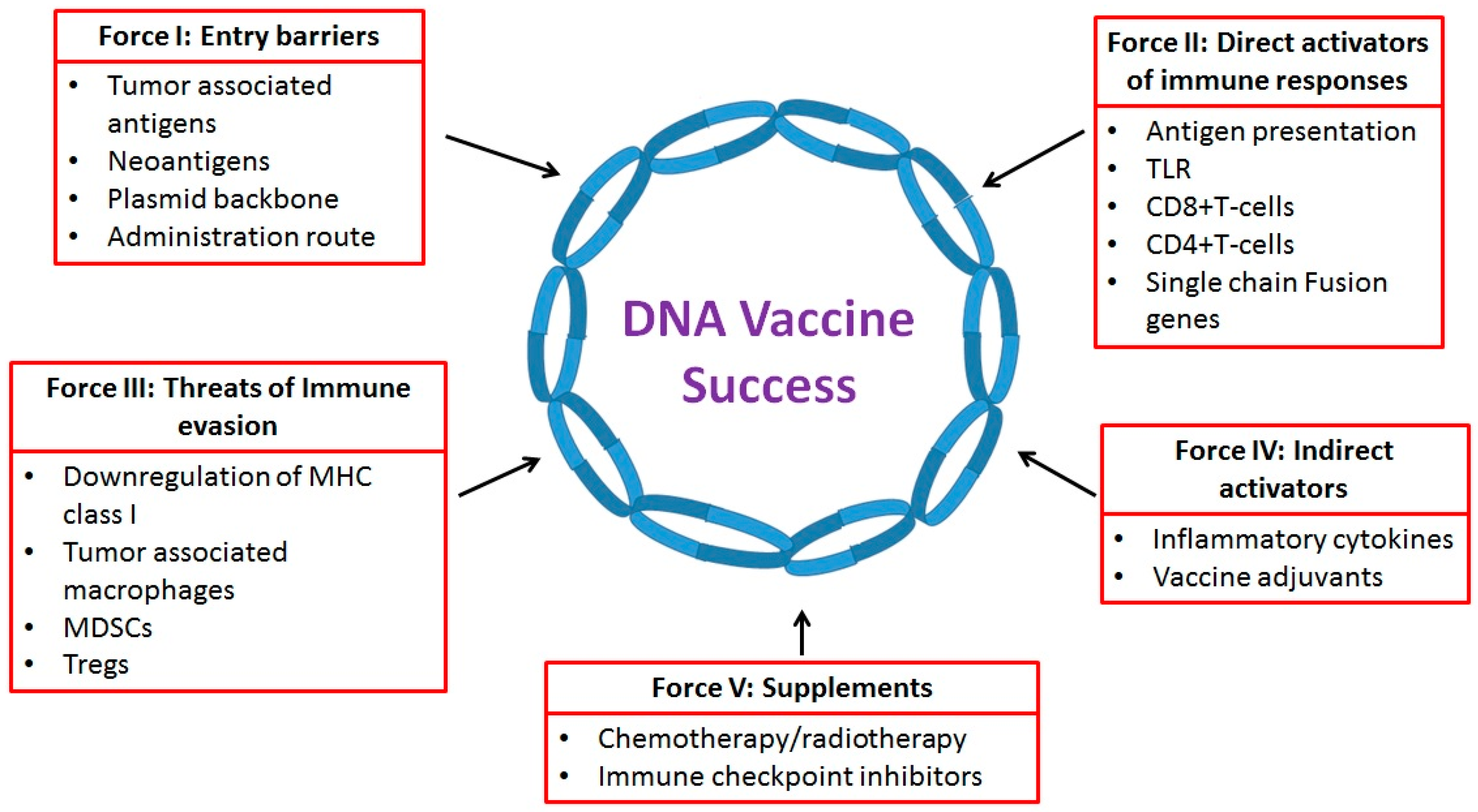 IJMS | Free Full-Text | The Five Immune Forces Impacting DNA-Based