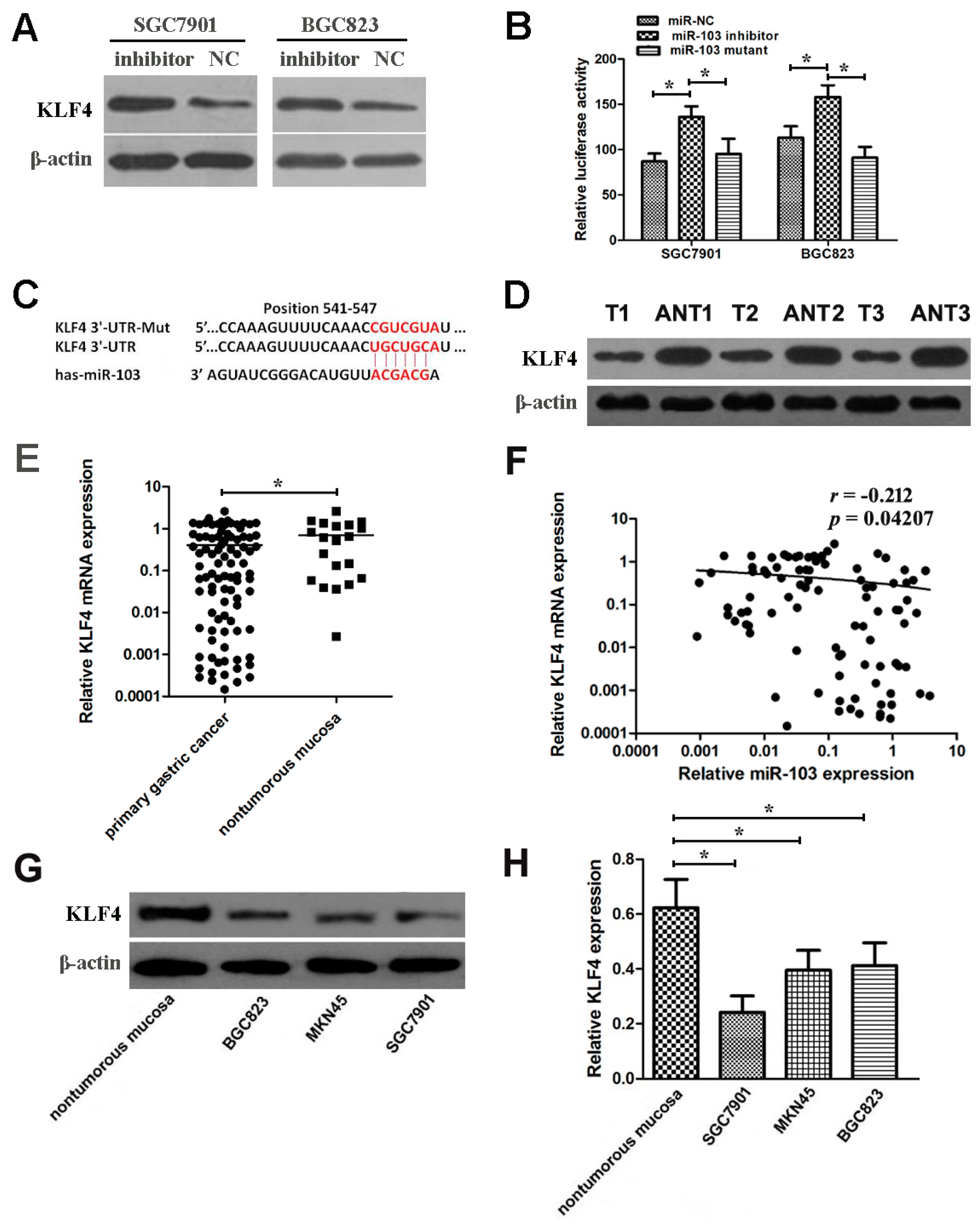 gre biochemistry cell and molecular biology rea pdf