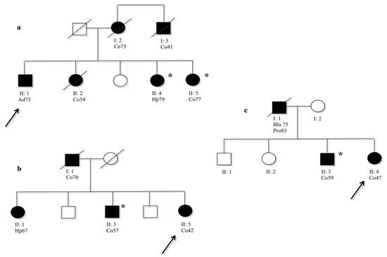Brain function map memory image 2