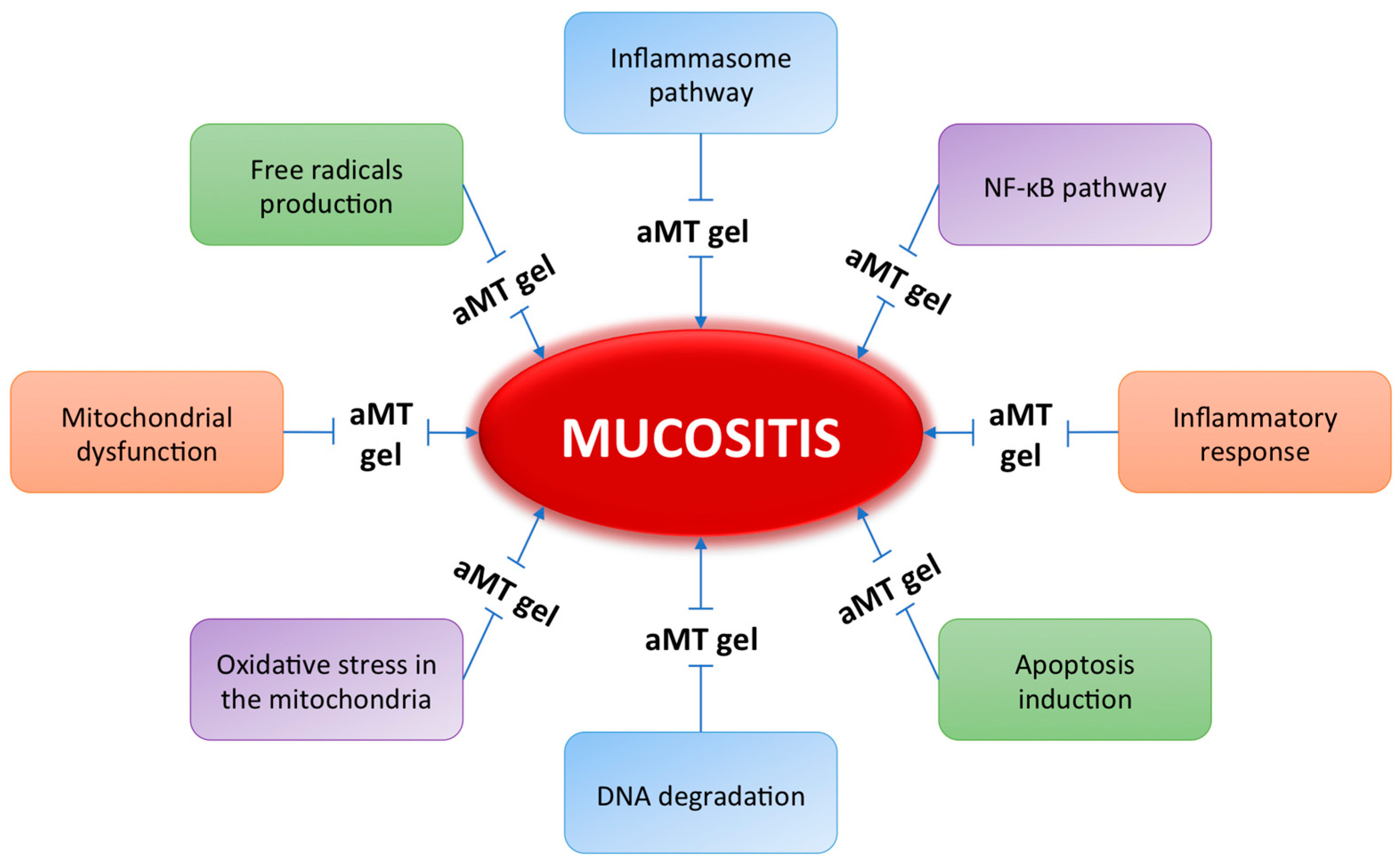 Stehle Flos ijms free text mucositis melatonin gel an effective