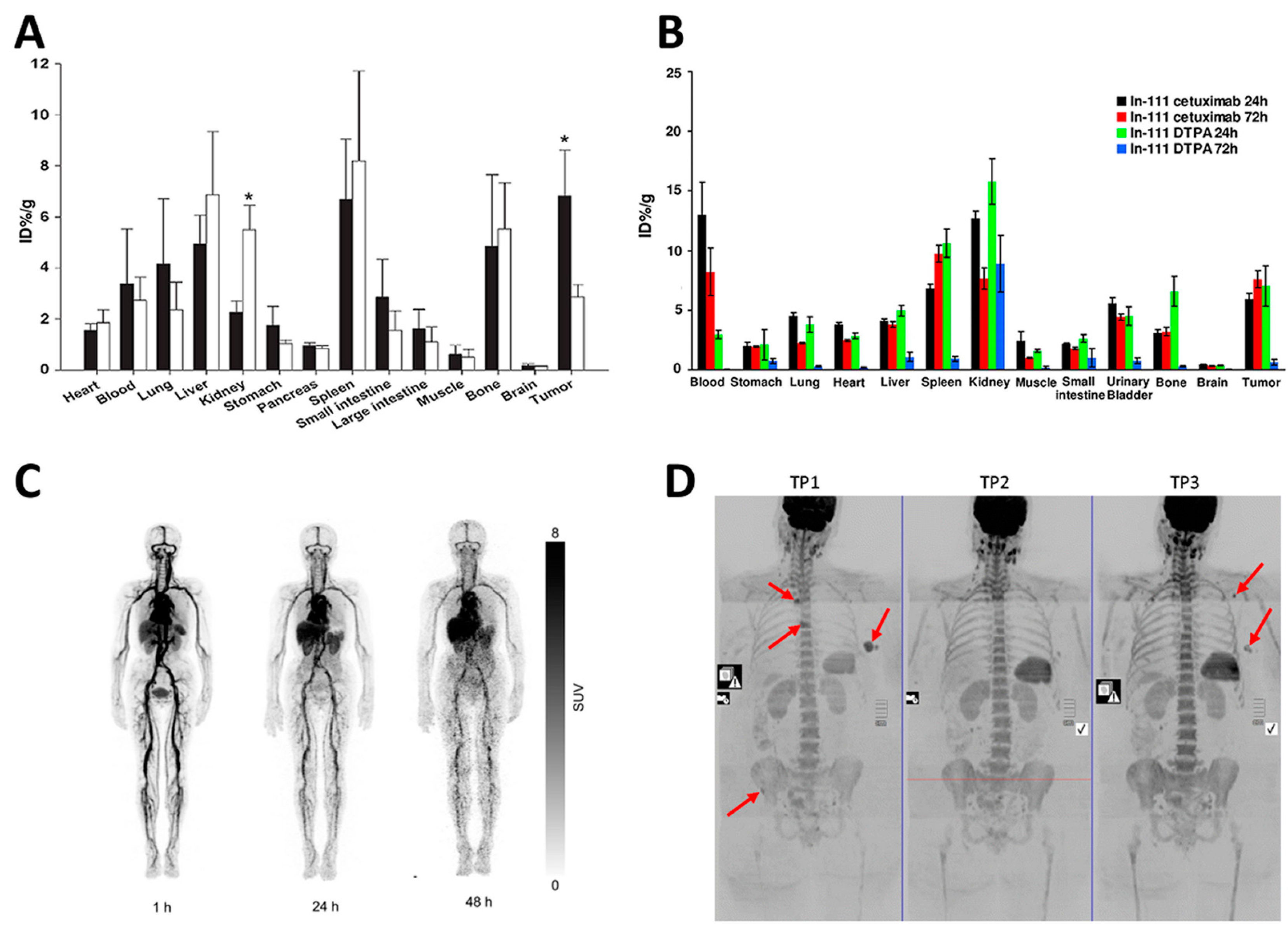 Ijms Free Full Text Emerging Role Of The Spleen In The