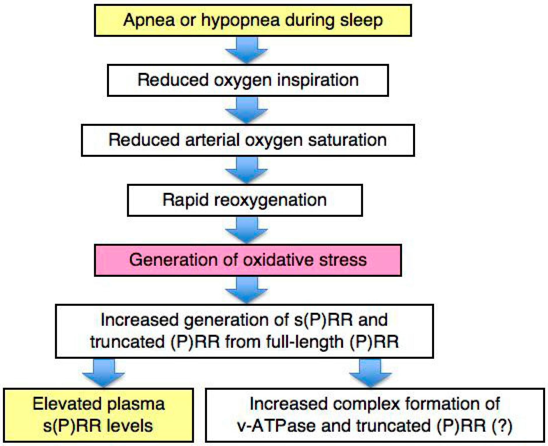 OBSTRUCTIVE SLEEP APNEA SYNDROME DOWNLOAD