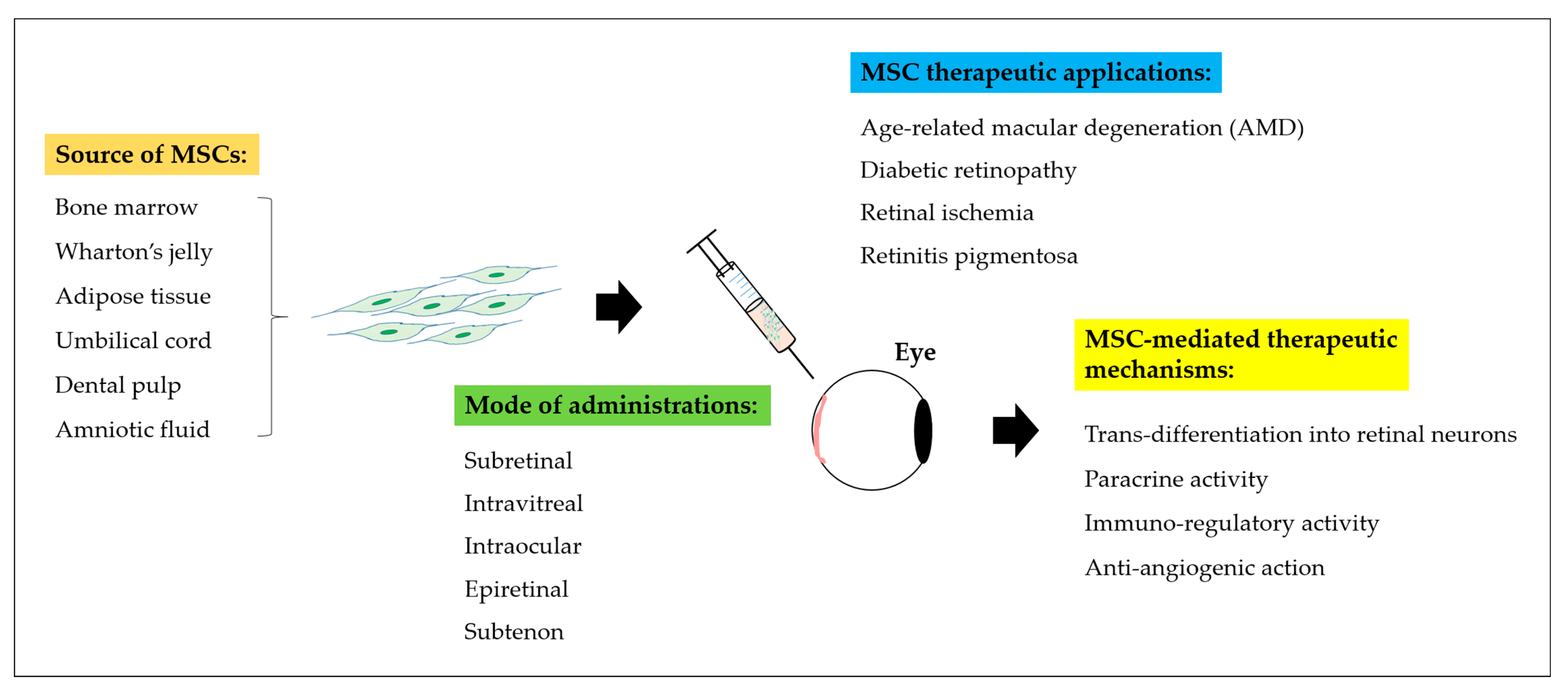 Ijms Free Full Text Cellular Reparative Mechanisms Of
