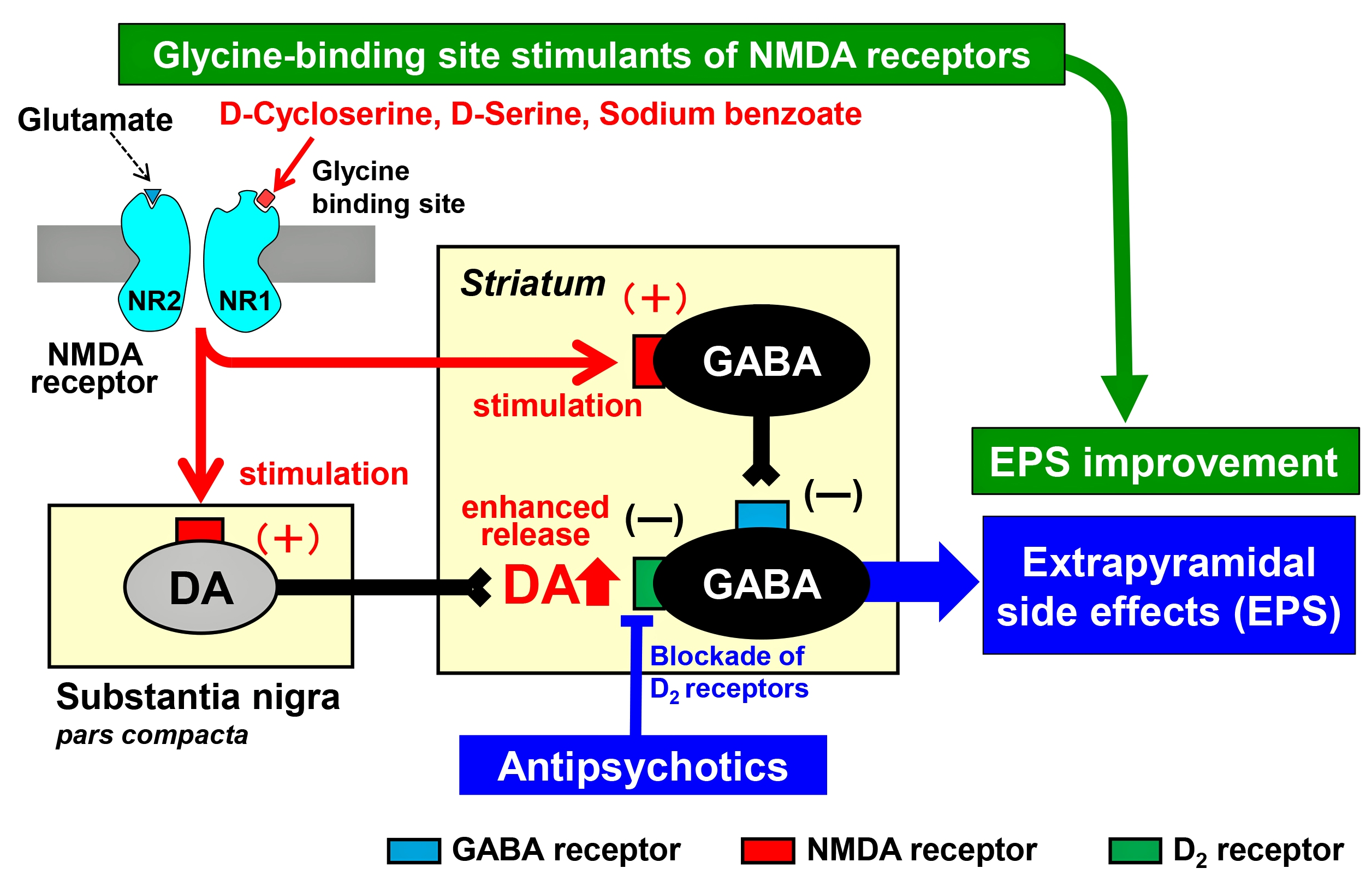 IJMS | Free Full-Text | Glycine-Binding Site Stimulants of NMDA