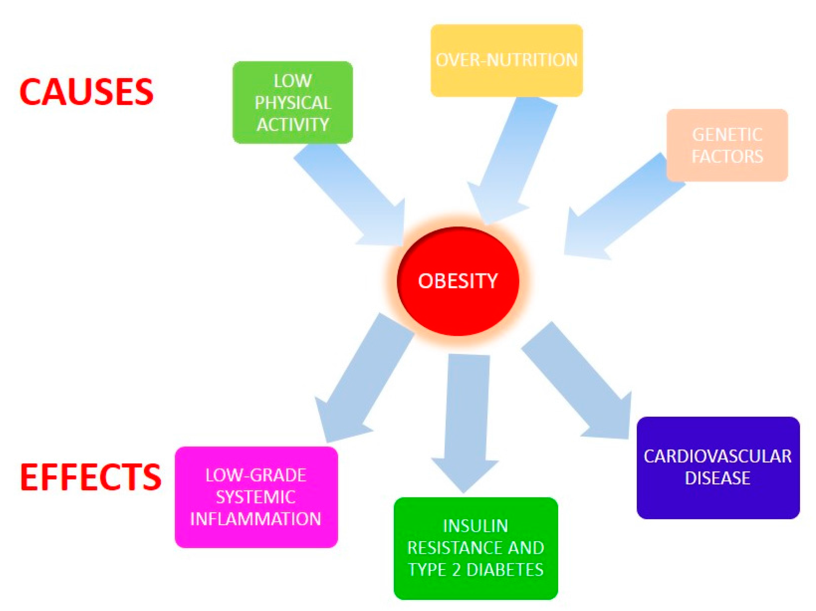 cause and effect essay of obesity Causes and effects of obesity essay - compose a quick custom research paper  with our assistance and make your tutors amazed if you need to find out how to.