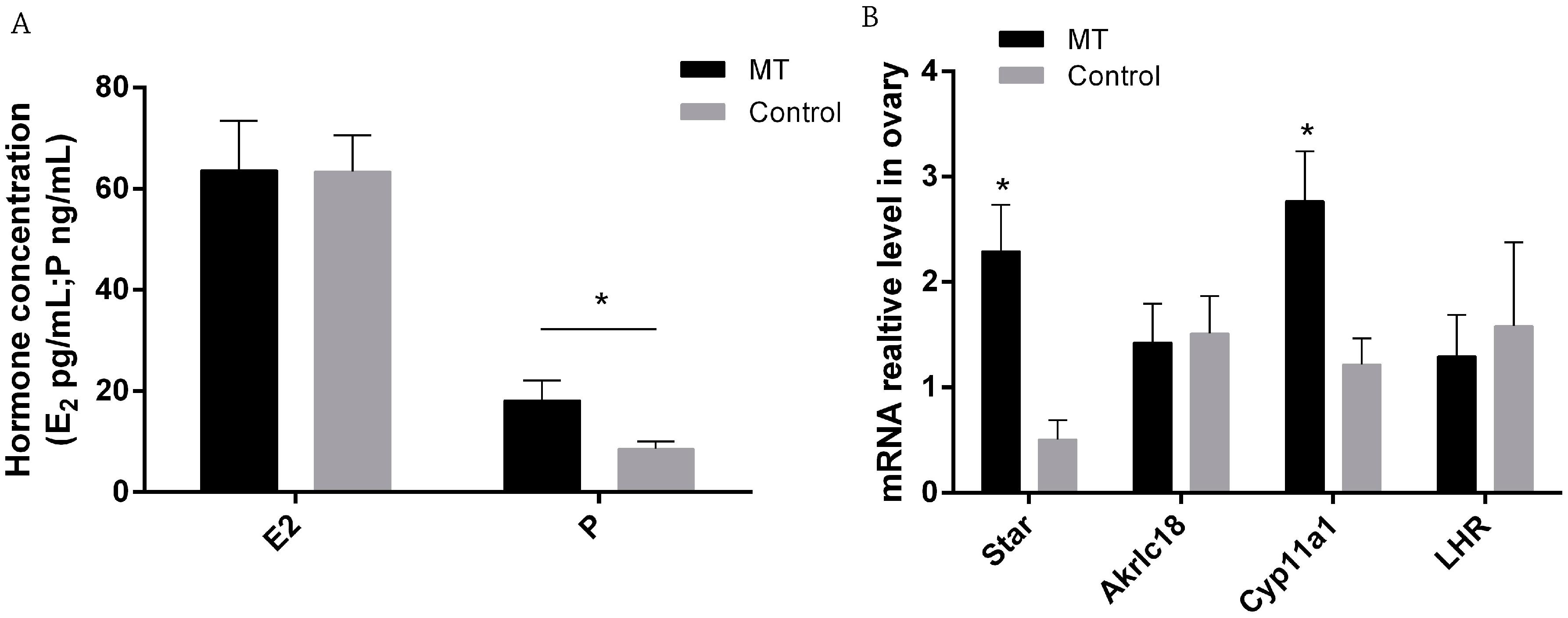 IJMS | Free Full-Text | Effects of Melatonin on Early