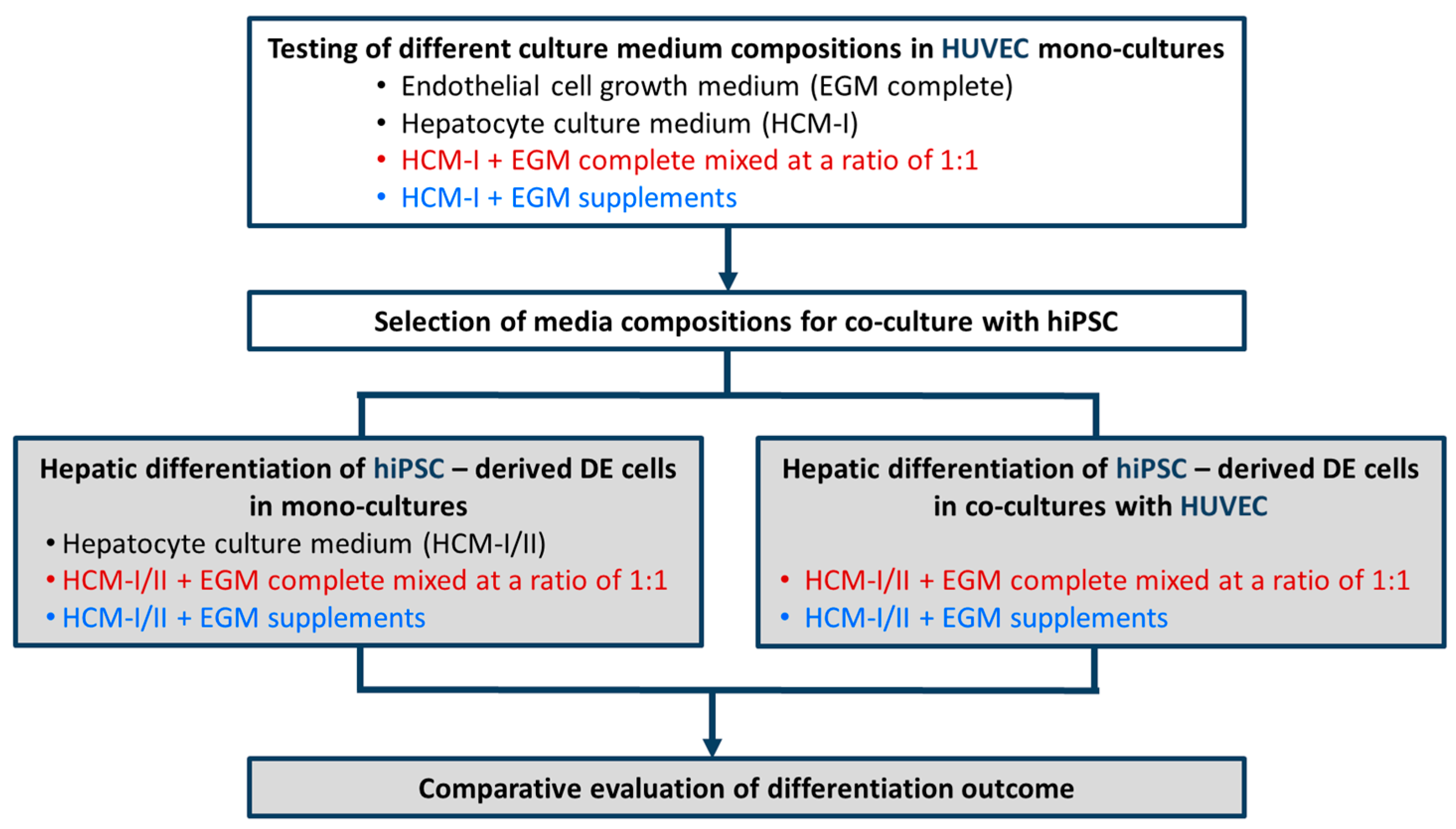 IJMS | Free Full-Text | Effects of Co-Culture Media on