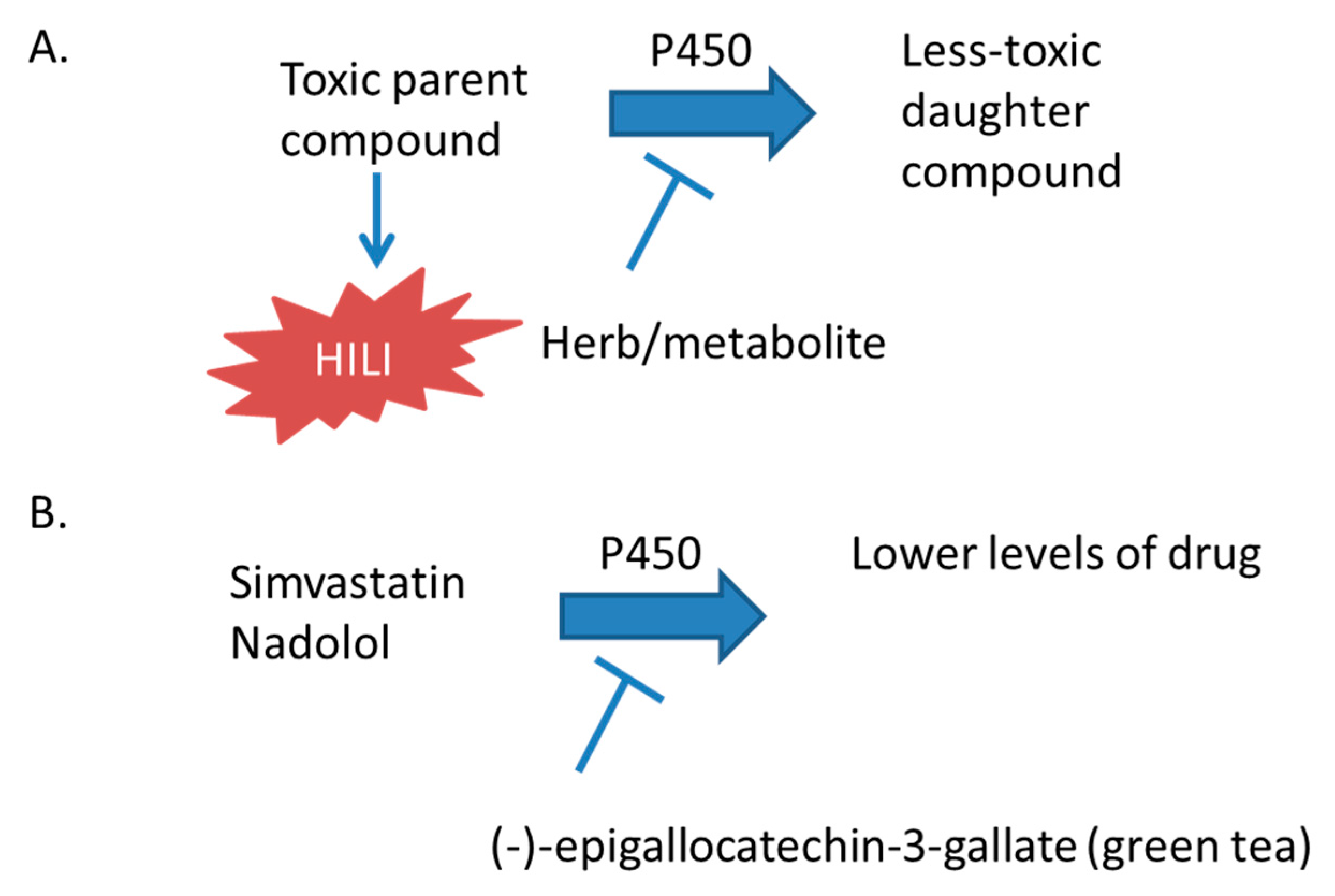 IJMS   Free Full-Text   Hepatotoxicity of Herbal Supplements