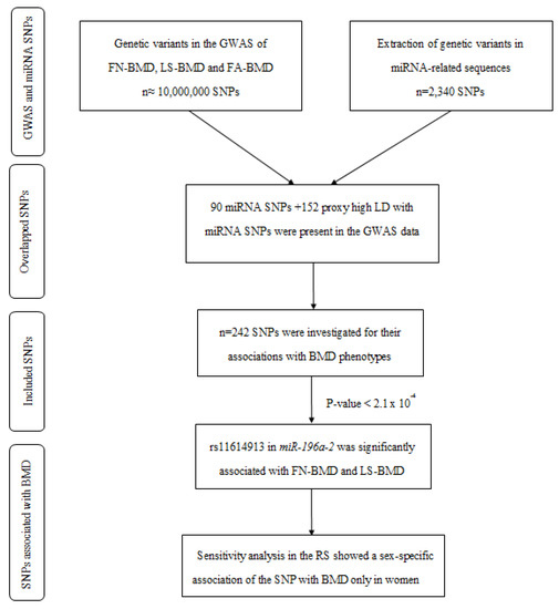 Ijms Topical Collection Human Single Nucleotide Polymorphisms