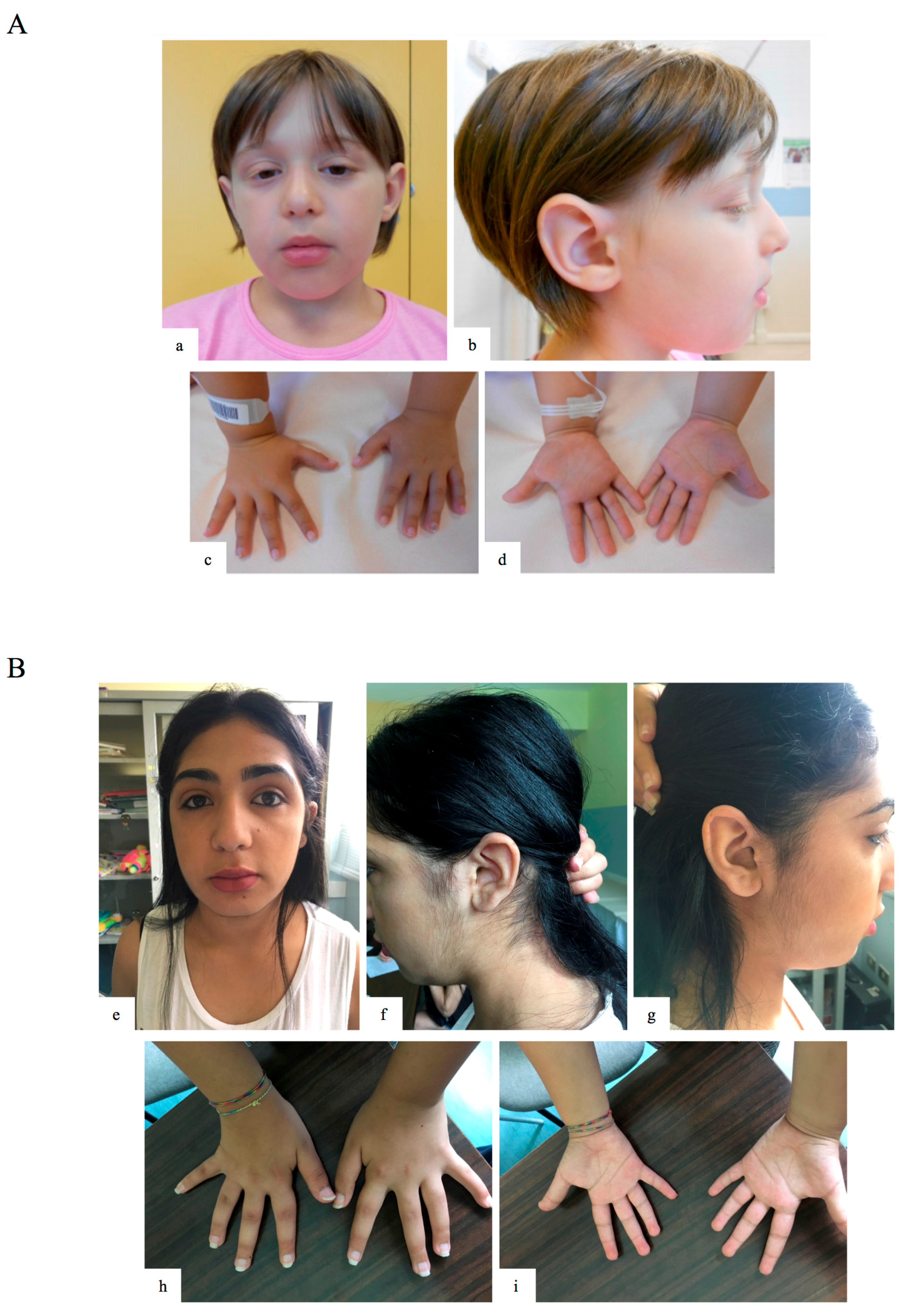 IJMS | Free Full-Text | Clinical and Neurobehavioral