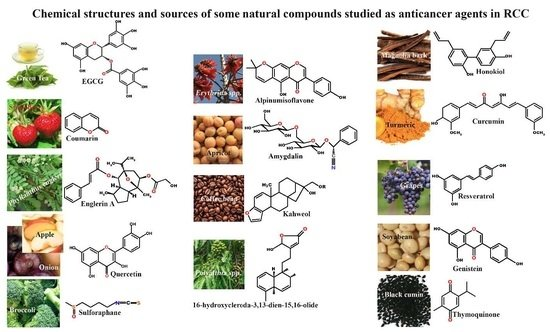 Ijms Free Full Text The Role Of Compounds Derived From
