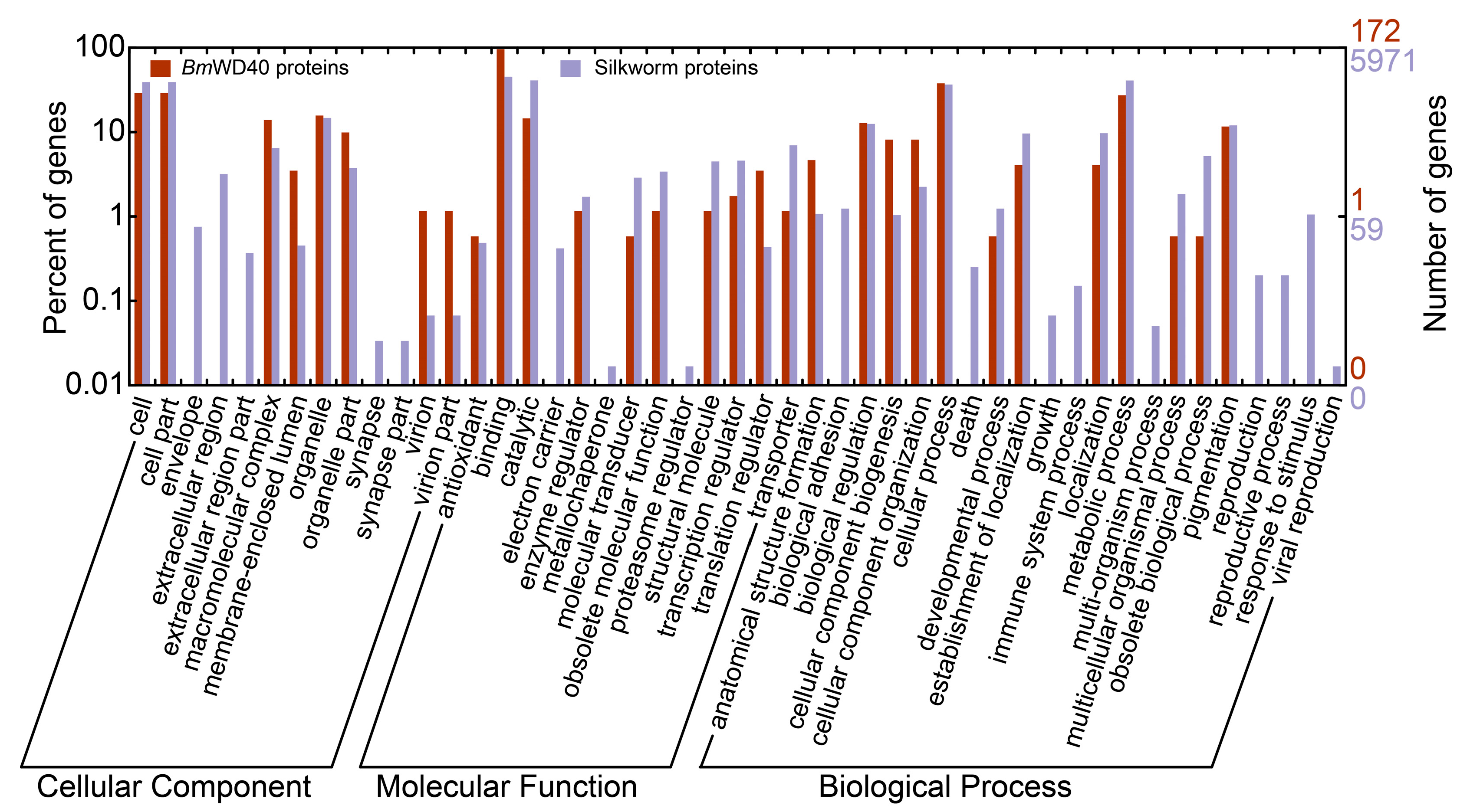 Ijms free full text genome wide identification and ijms 19 00527 g006 publicscrutiny Image collections